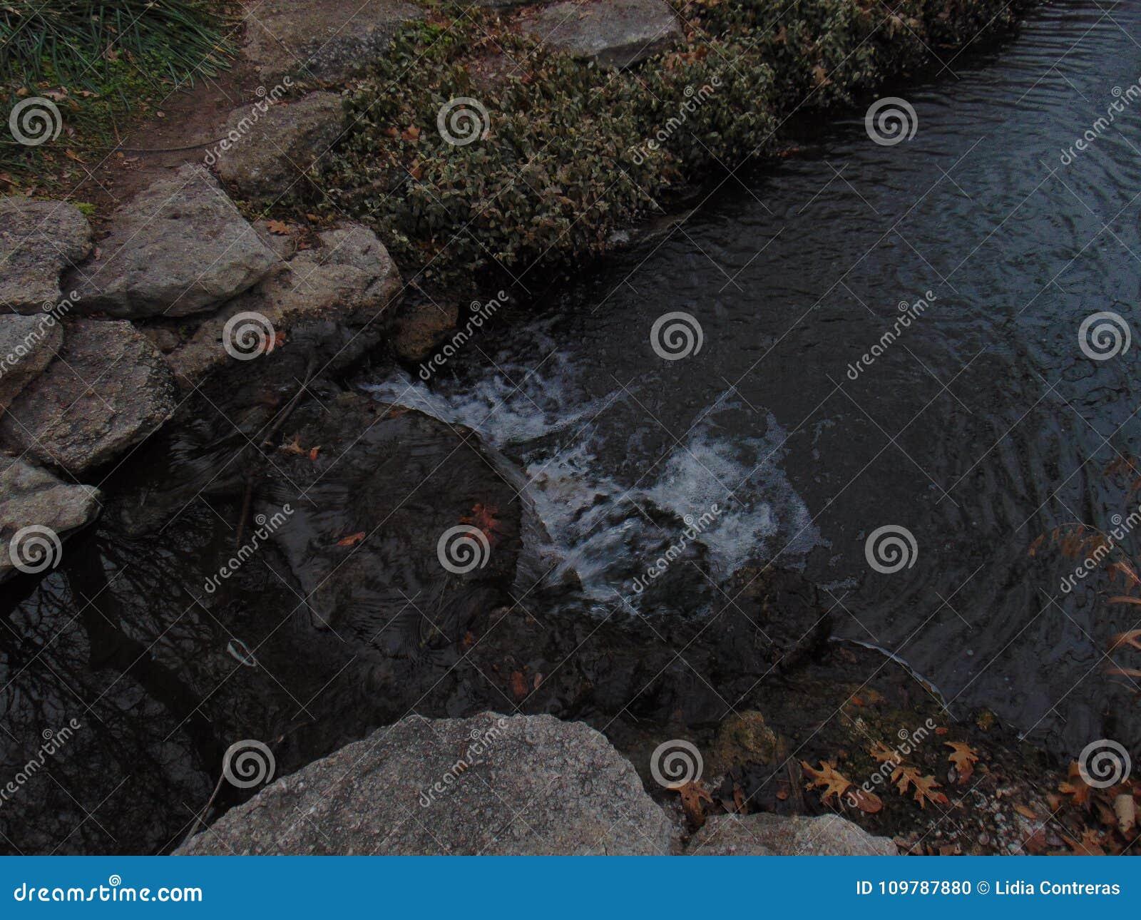 Viwes da queda da água