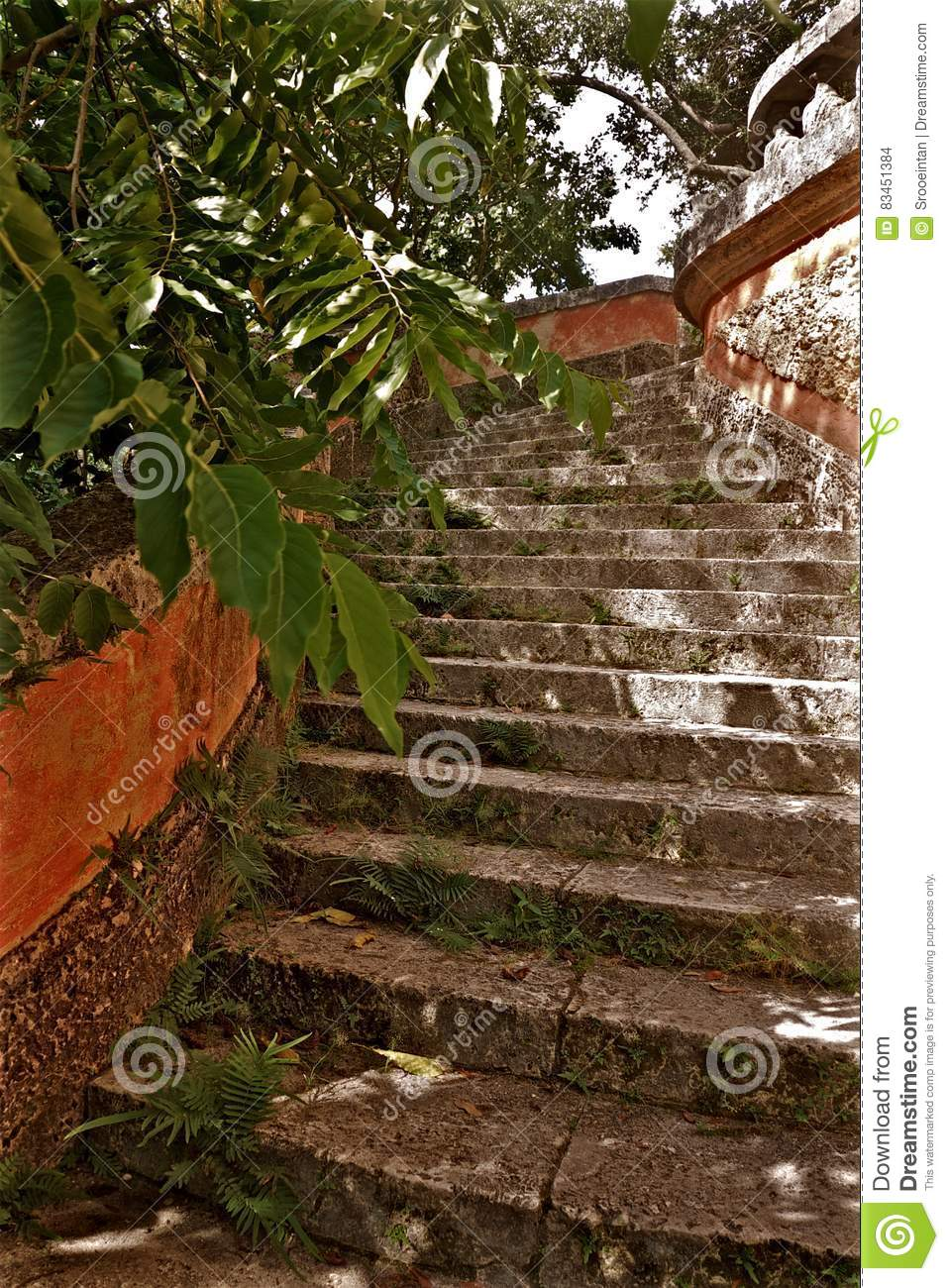 Vizcaya Museum And Gardens Stone Stairs Stock Photo - Image of ...