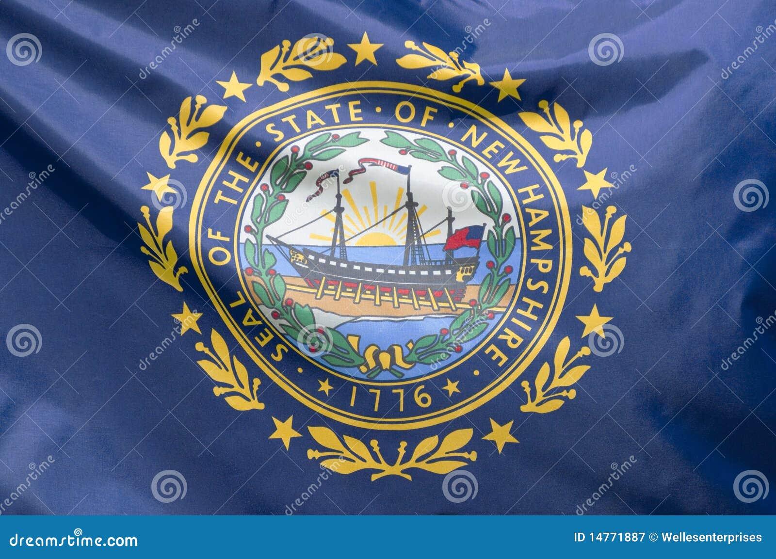 Vlag de van Newhampshire van de Staat