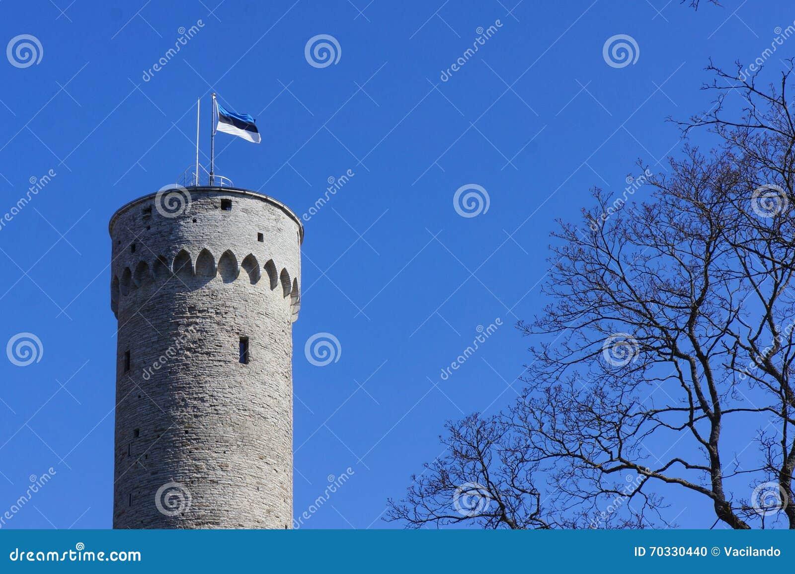 Vlag die van Estland bovenop massieve oude historische toren in Tallinn (Estland) golven met een vlaggestok