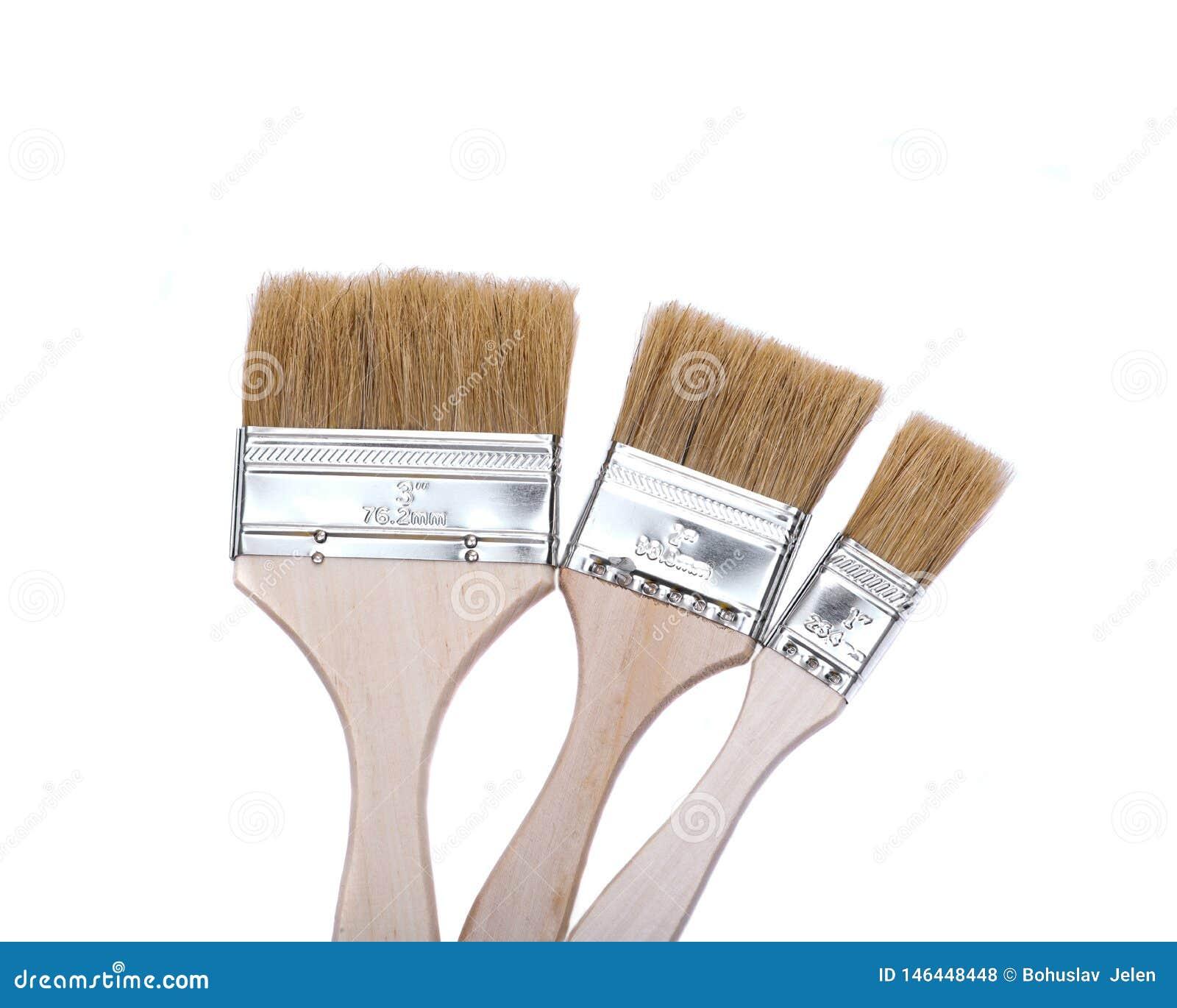Vlak die Chip Painting Brush op wit wordt geïsoleerd