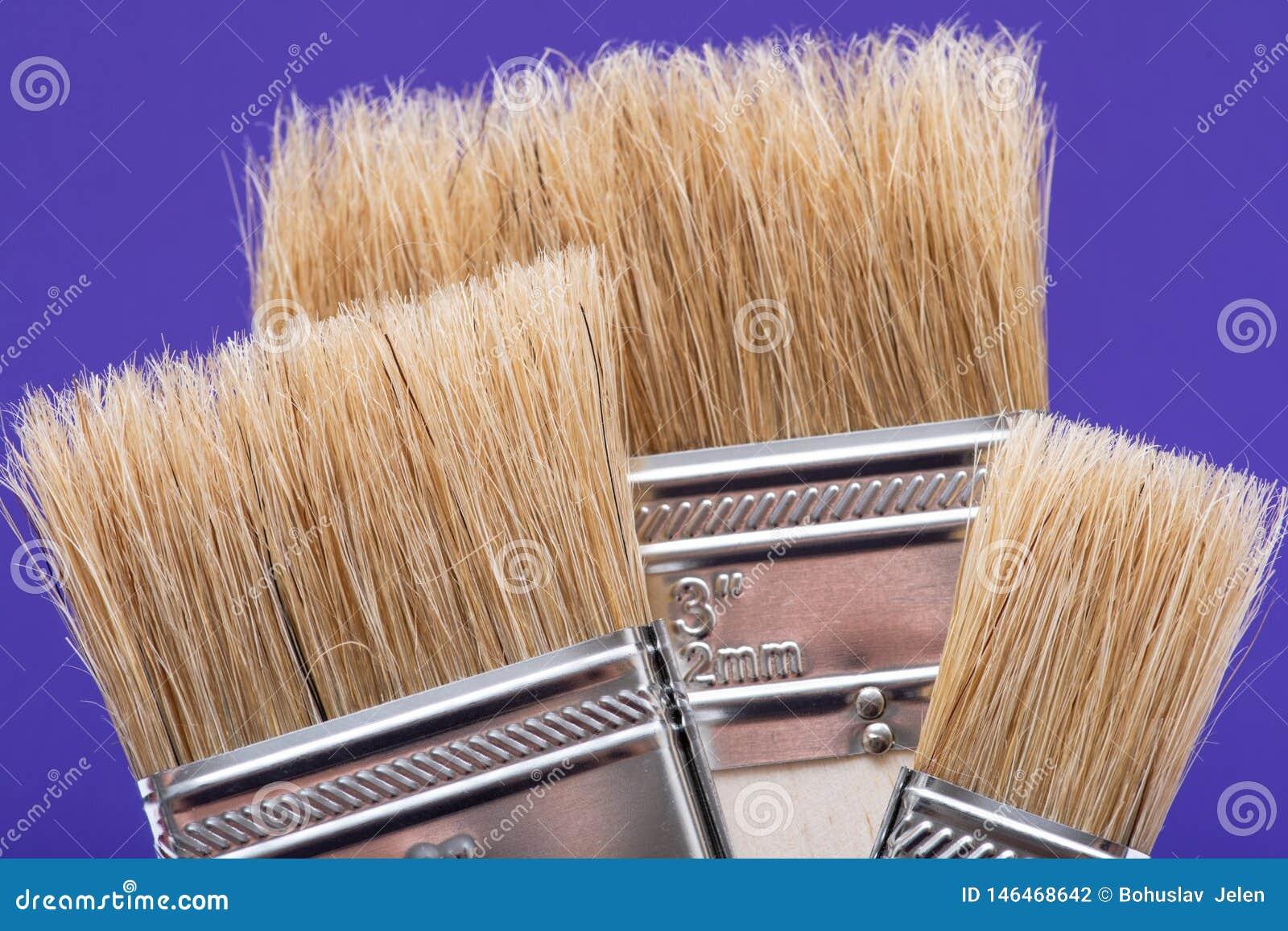 Vlak die Chip Painting Brush op purple wordt ge?soleerd