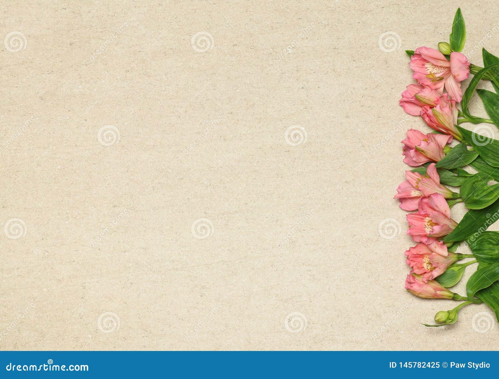 Vlak leg kader met bloemen op beige granietachtergrond