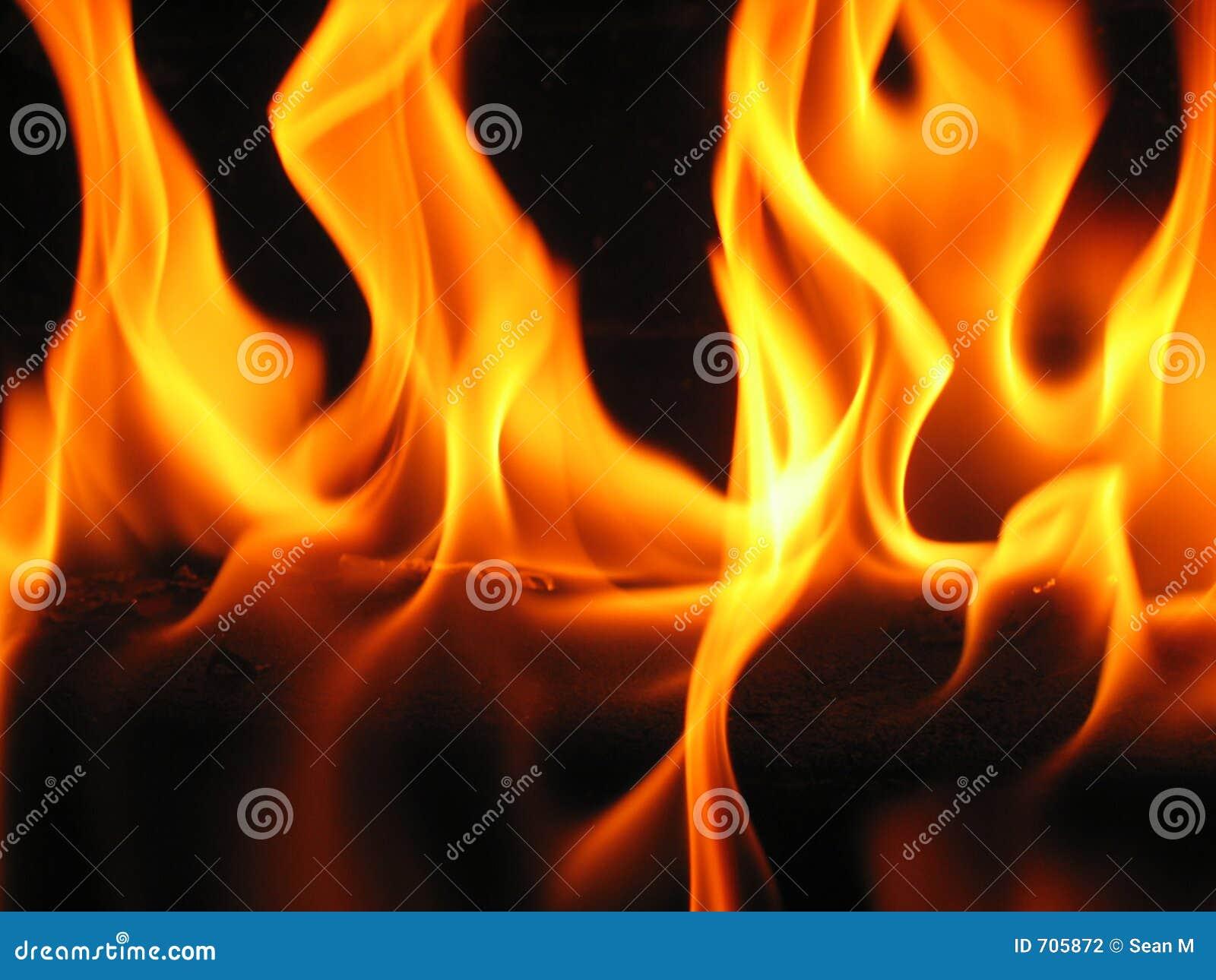 Vlammen die uit een logboek komen