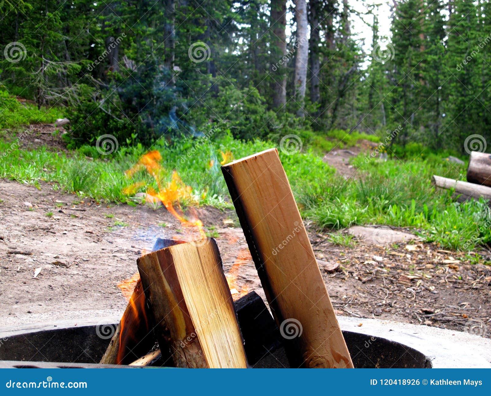 Vlammen van een Kampvuur in Kuil van een Bergkampeerterrein
