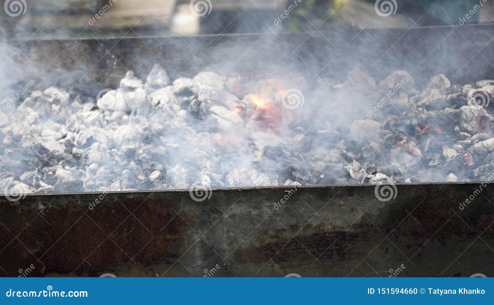Vleeskoks op hete steenkolen in de rook Picknick in aard