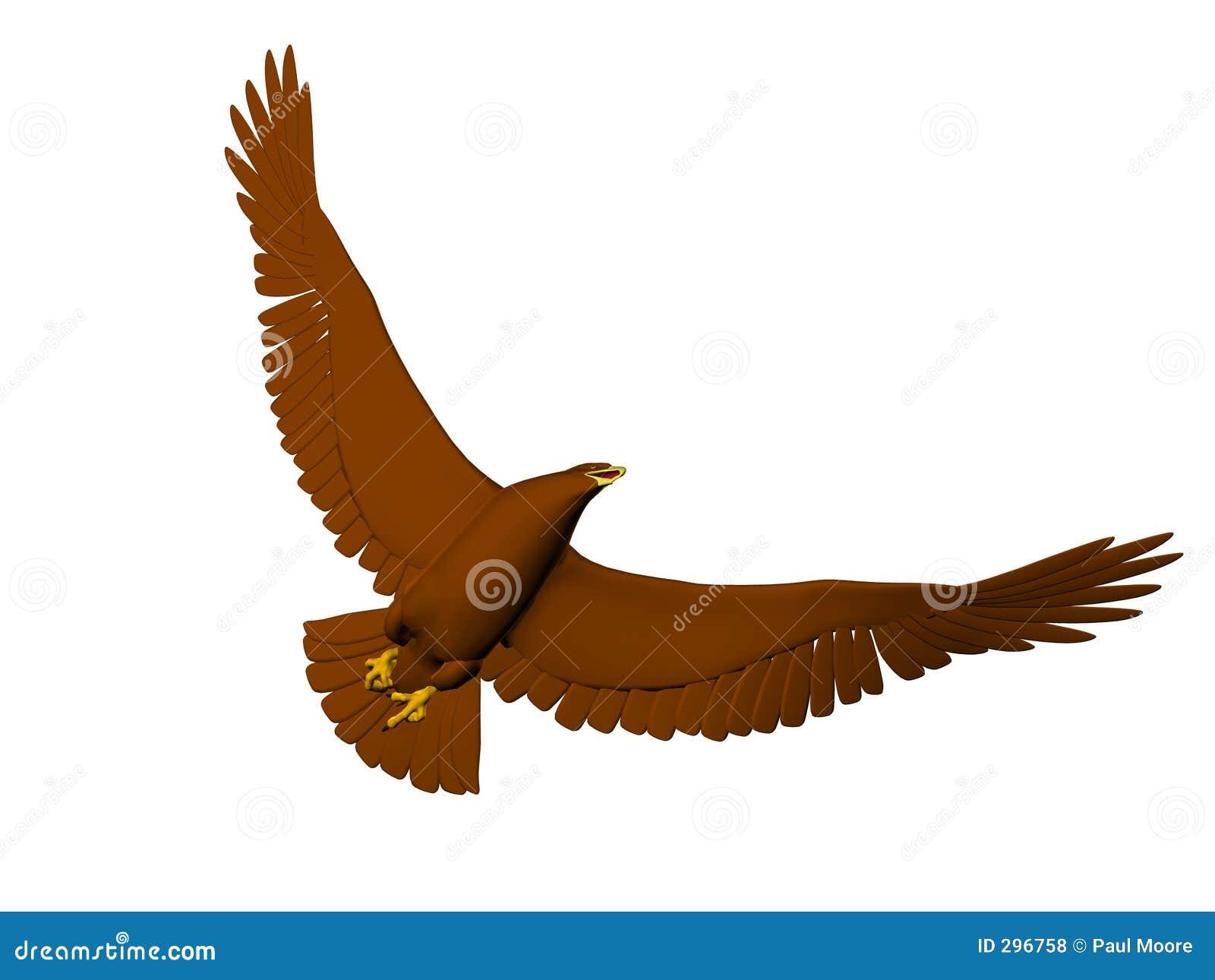 Vliegende het Draaien Adelaar