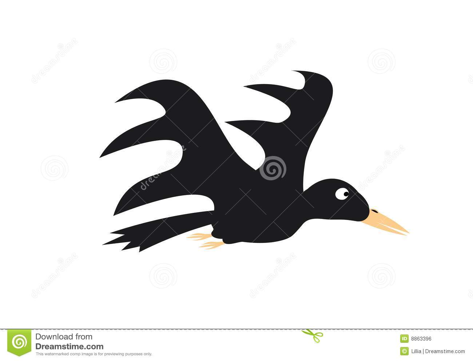 Vliegende kraai