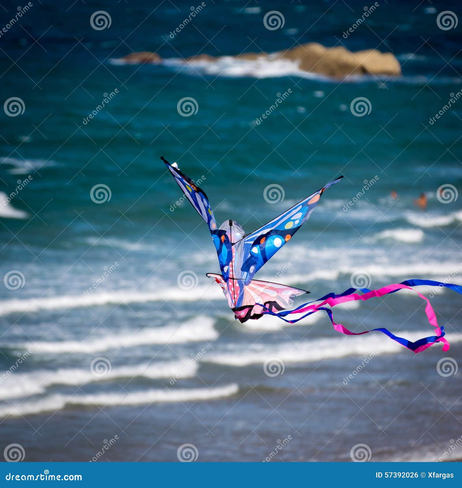 Vlieger die op het Strand vliegt