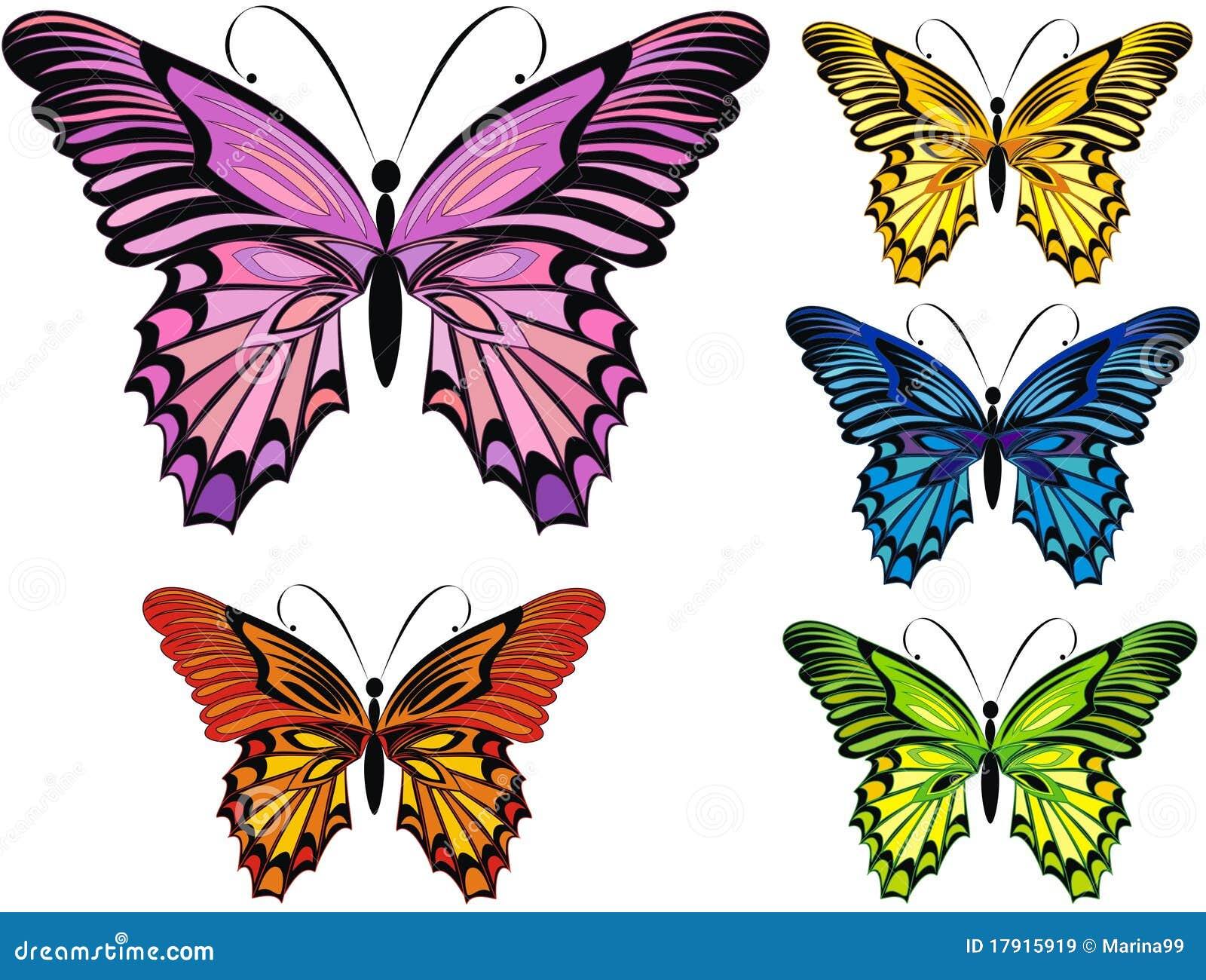 21 mooie kleurrijke vlinder - photo #30