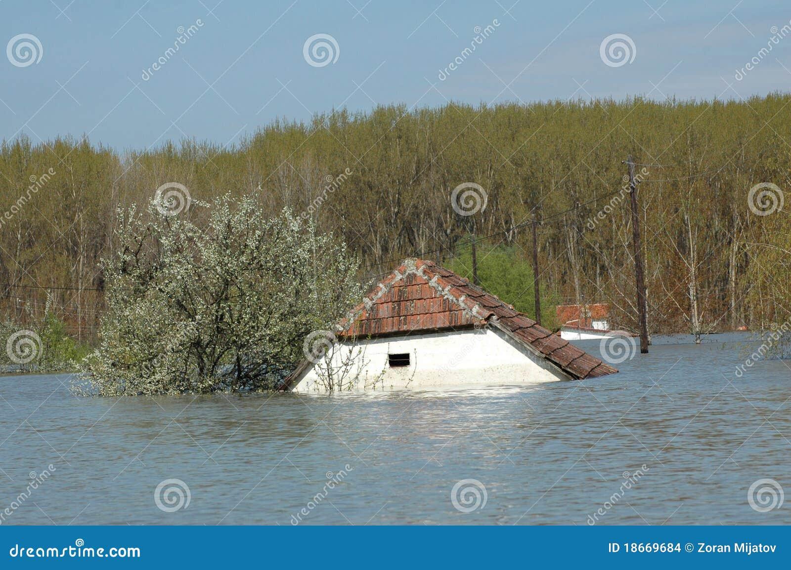 Vloed