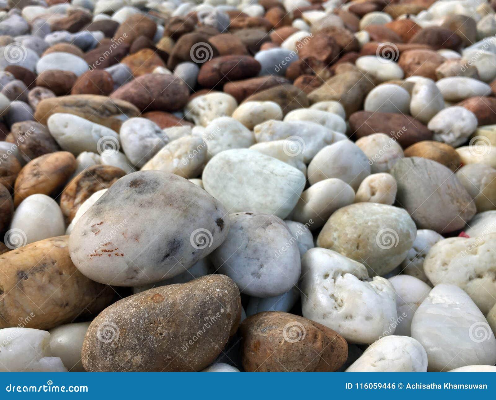 Vlotte bruine zwarte grijze witte kiezelstenen of stenen voor