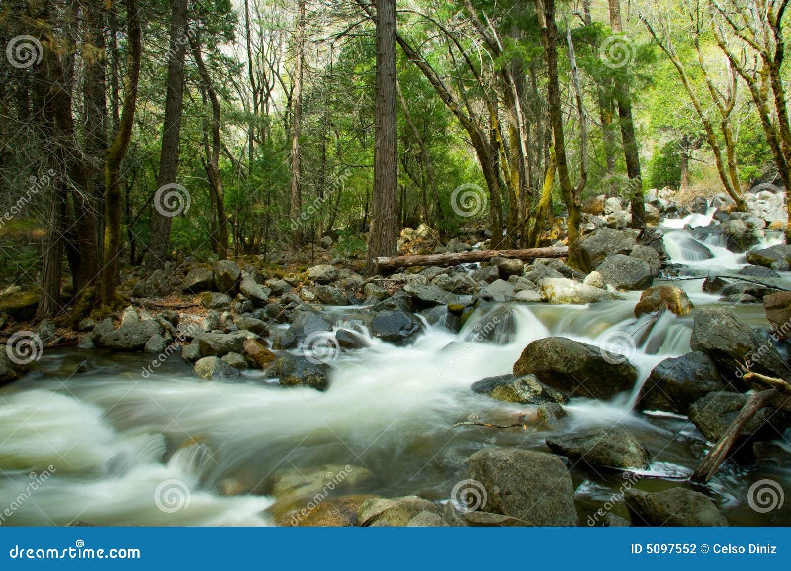 Toneelmening die van rivier over rotsen in bos, het nationale park van