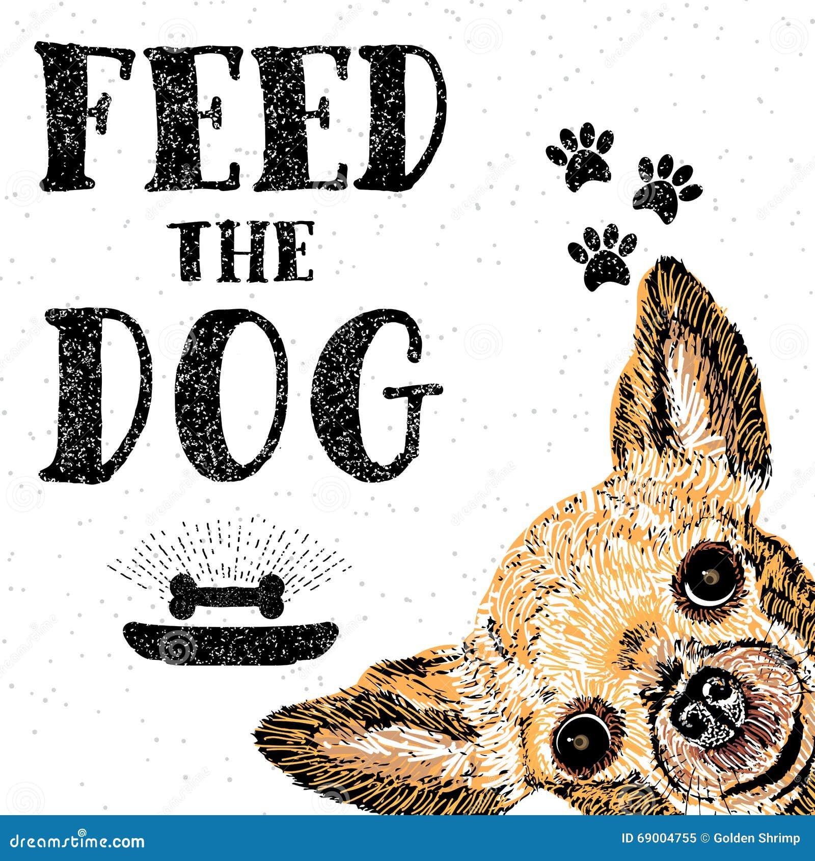 Voed de hond