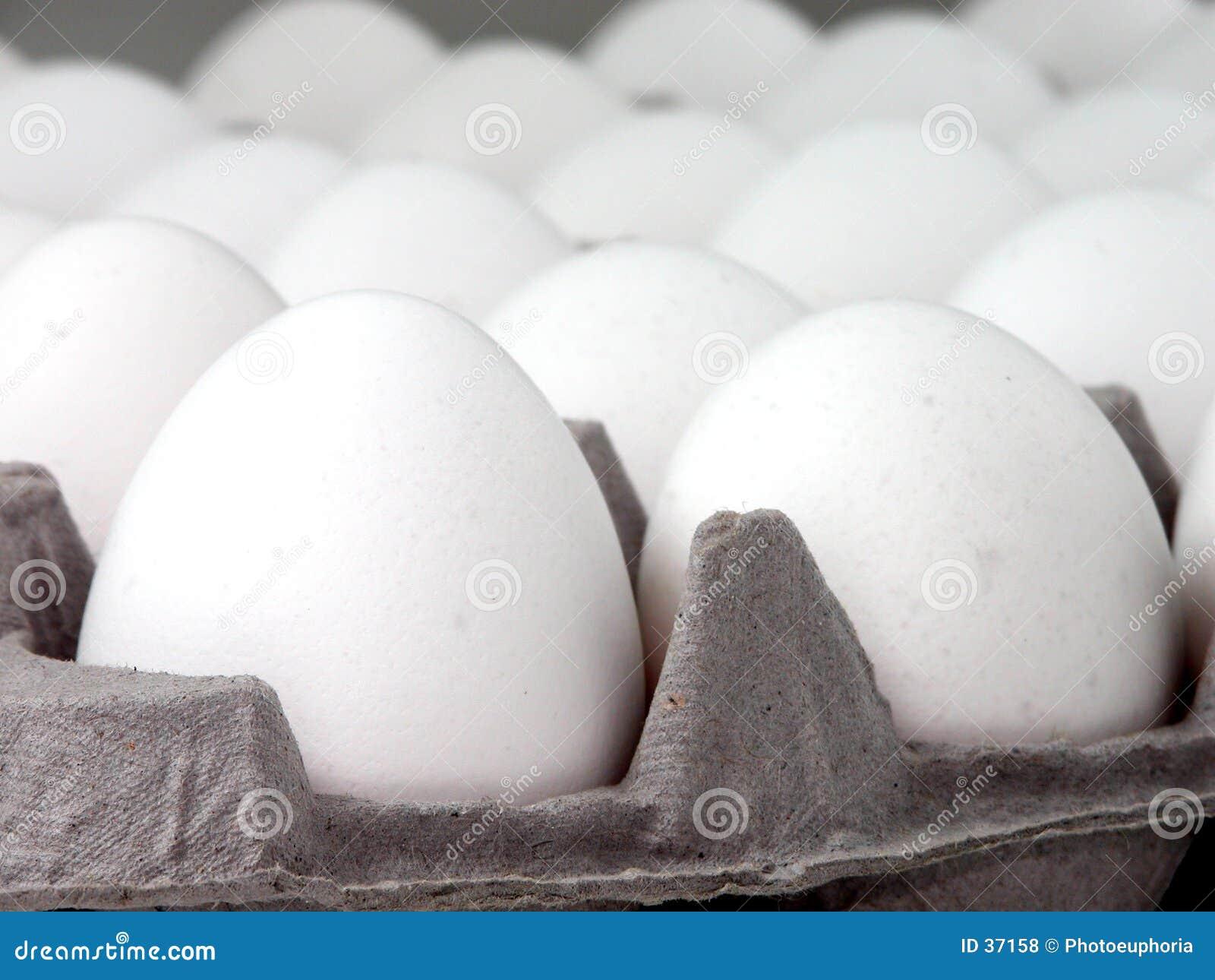 Voedsel: De Close-up van het ei