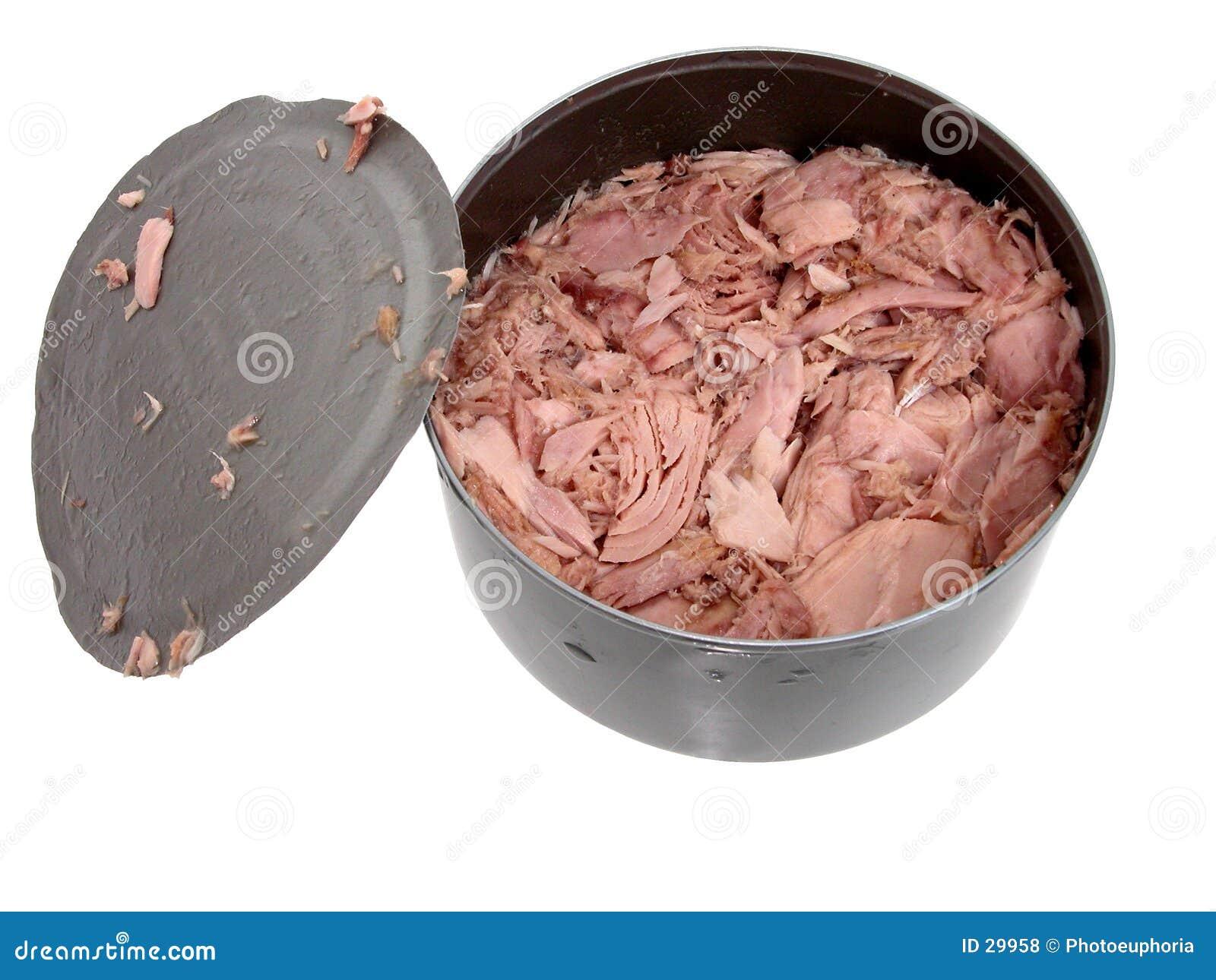 Voedsel: De tonijn in a kan