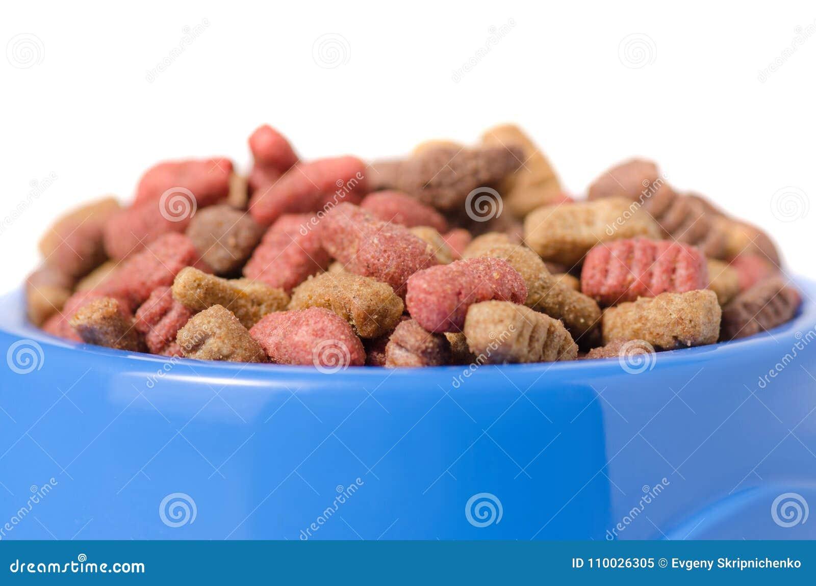 Voedsel voor honden en katten in een blauwe kom