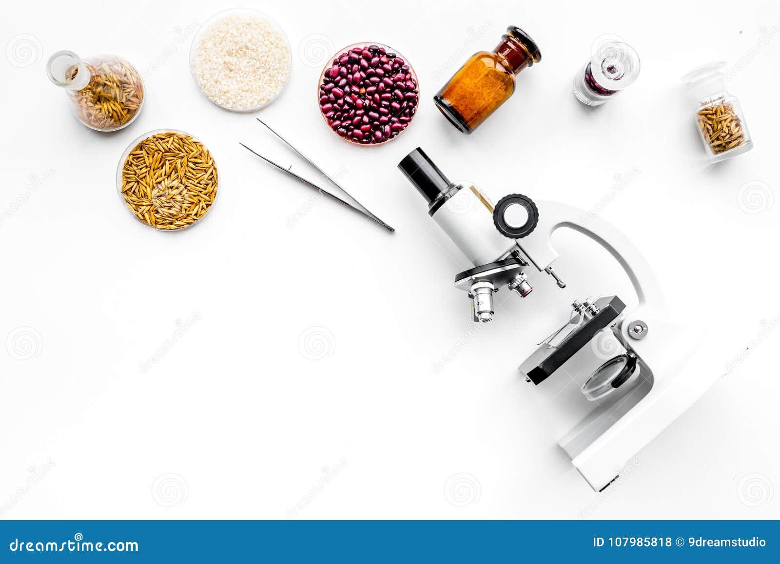 Voedselveiligheid De tarwe, de rijst en de rode bonen dichtbij microscoop op witte hoogste mening als achtergrond kopiëren ruimte