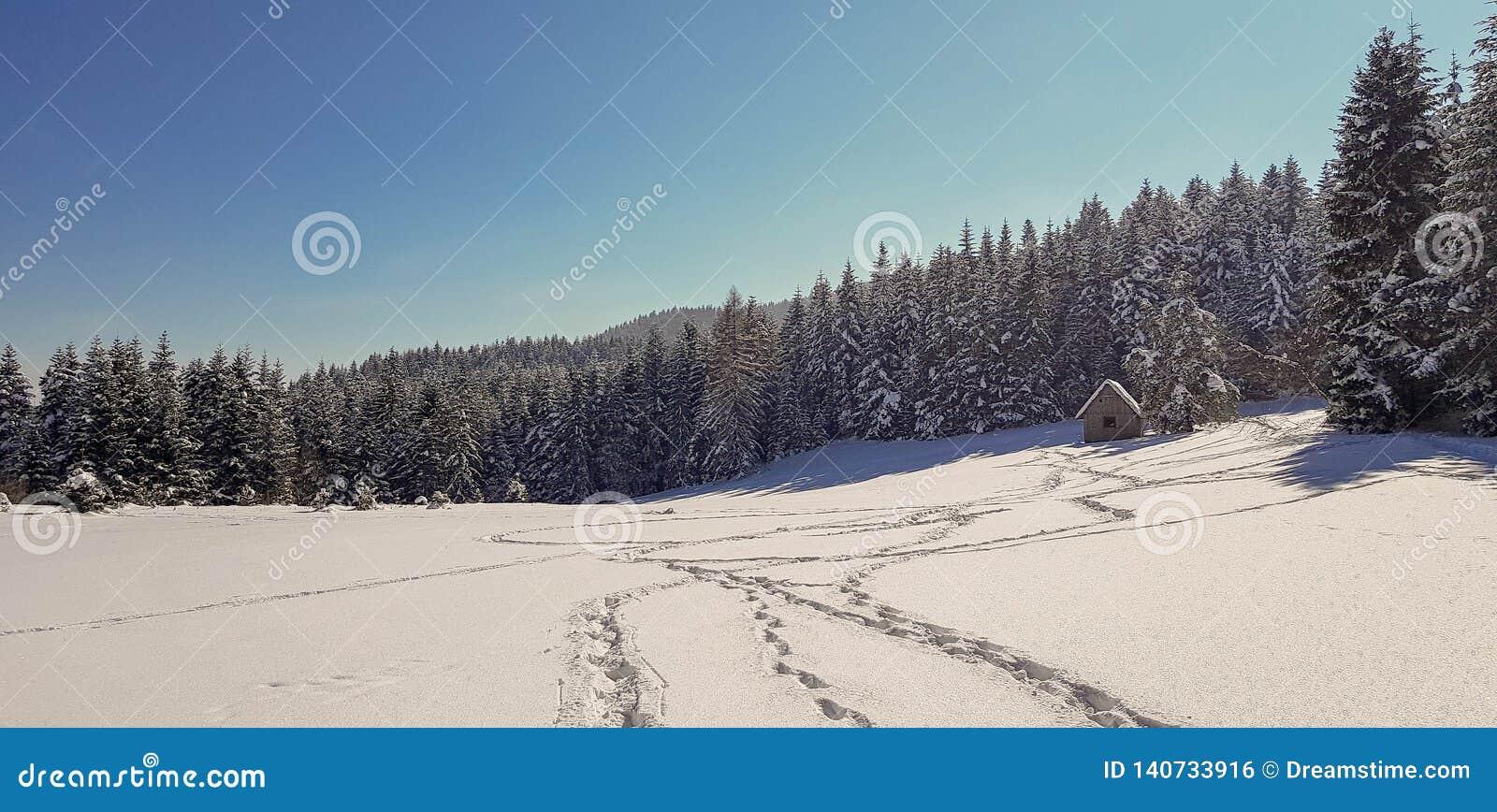 Voetstappen in sneeuw