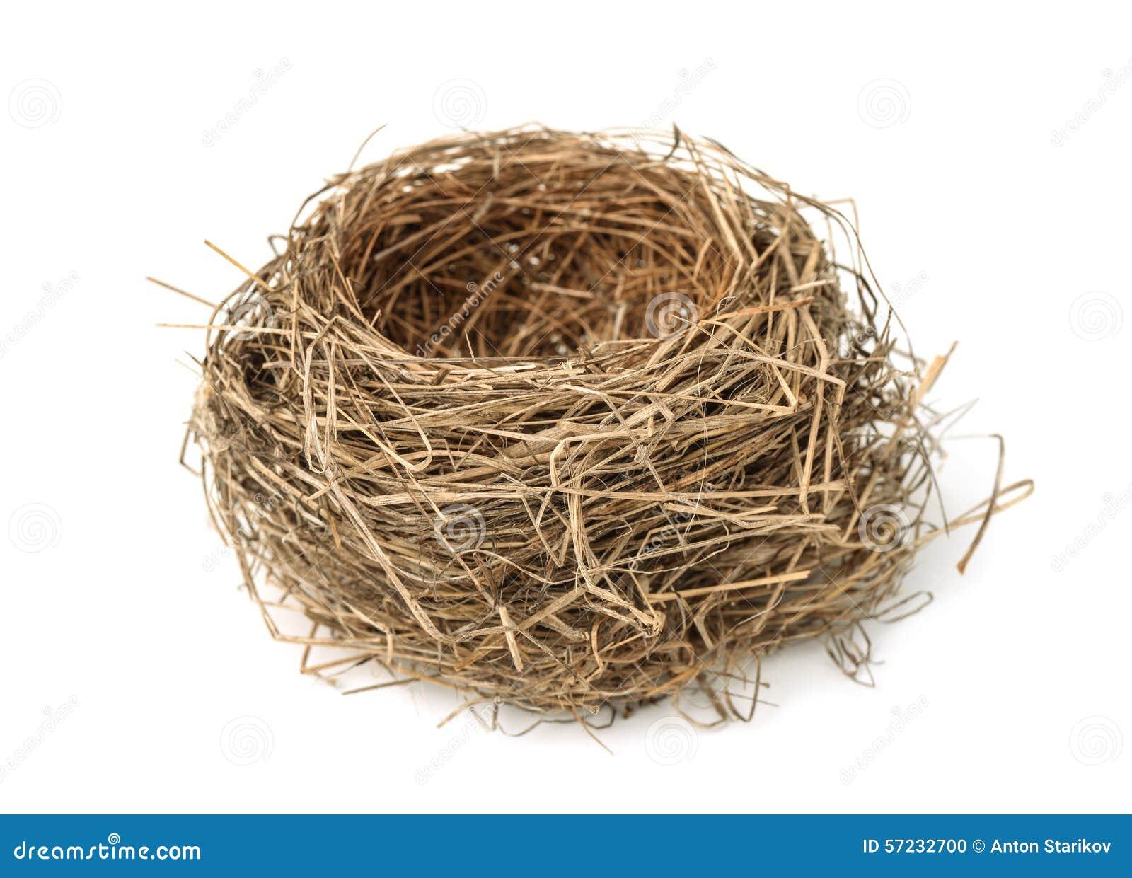 vogel nest stockfoto bild von abschlu geb ude leben 57232700. Black Bedroom Furniture Sets. Home Design Ideas