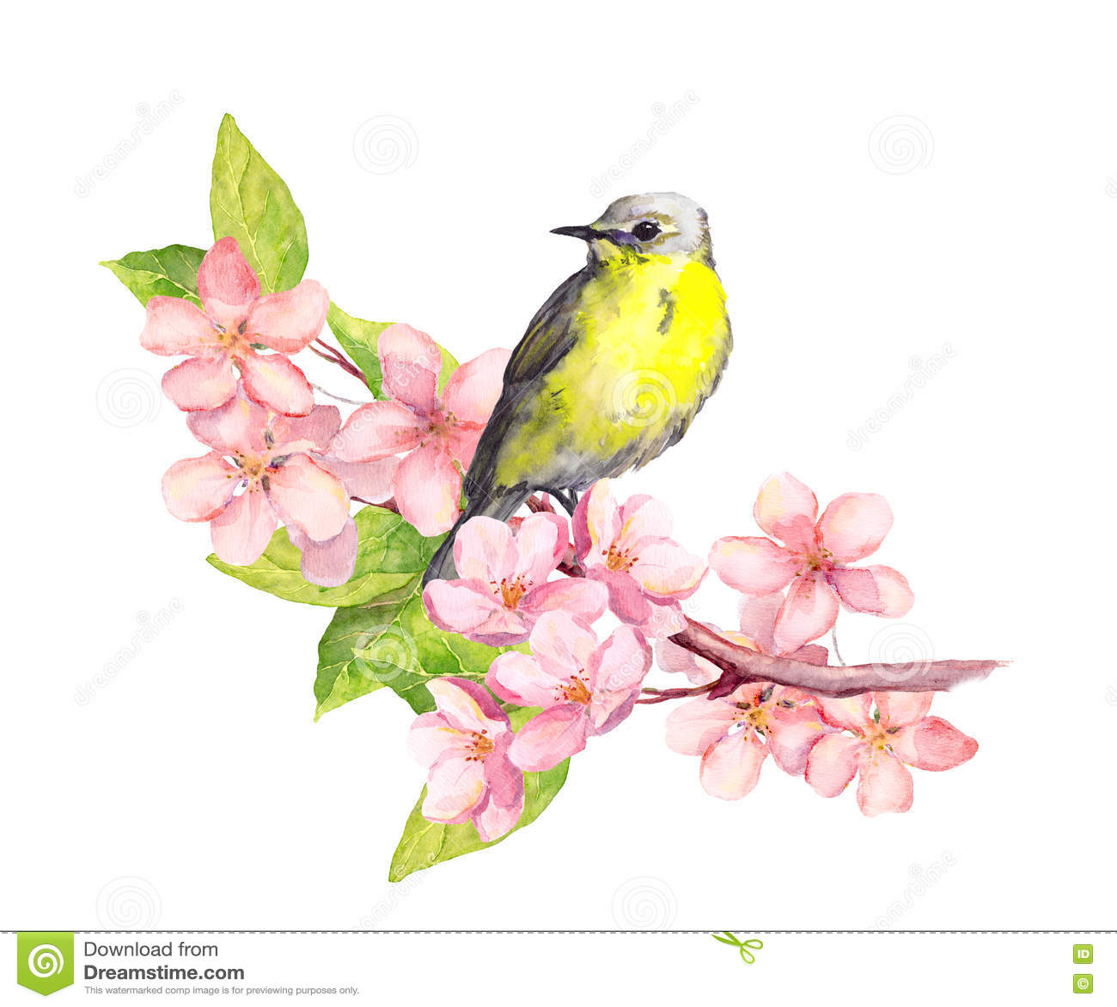 Vogel op bloesemtak met bloemen watercolor