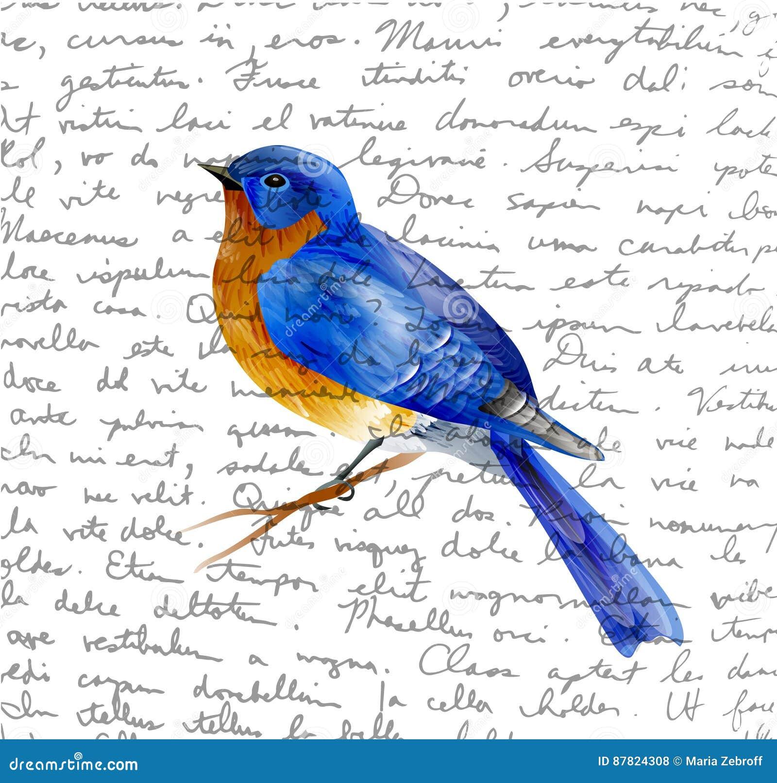 Vogel van de Lentevector