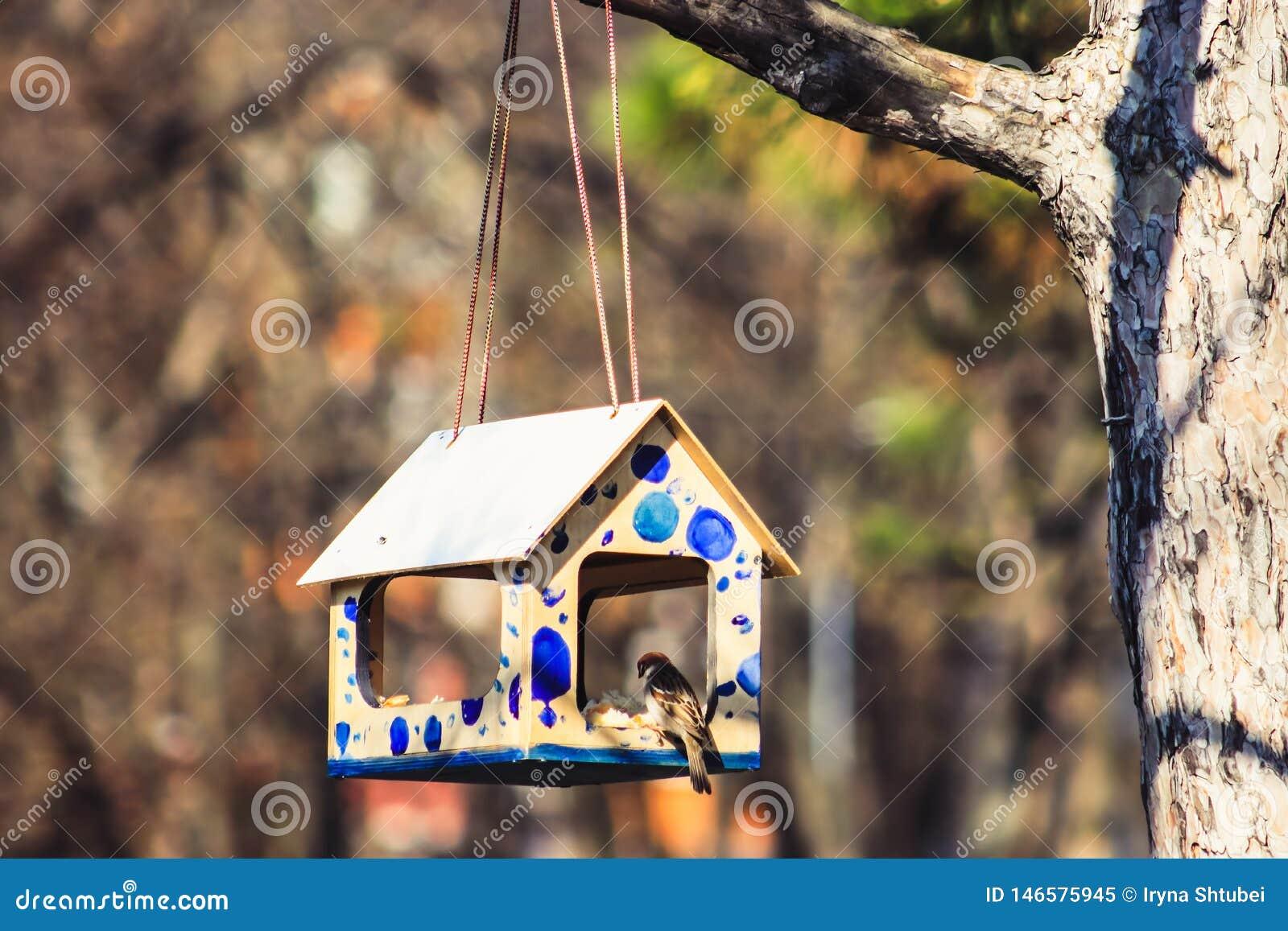 Vogel in vogelhuis