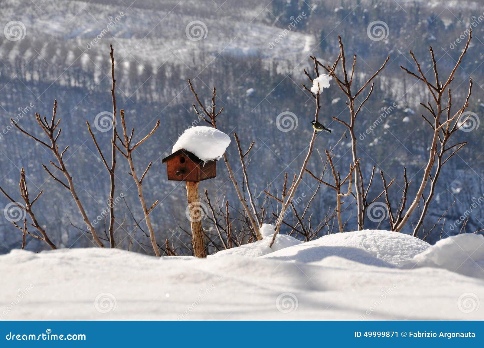 Vogelhuis in de wintersneeuw die wordt behandeld