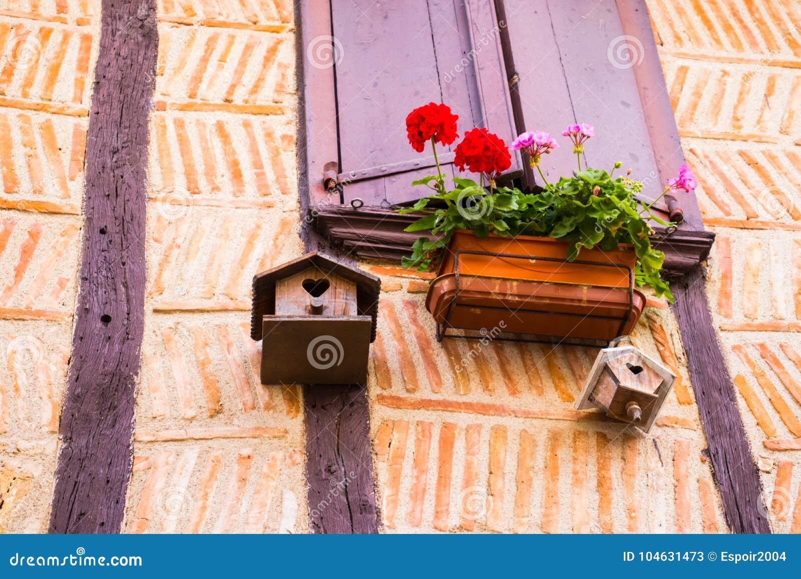 Download Vogelhuis Van Het Venster Van Een Oud Huis Met Stralen Wordt Opgeschort Die Stock Afbeelding - Afbeelding bestaande uit vogels, groen: 104631473