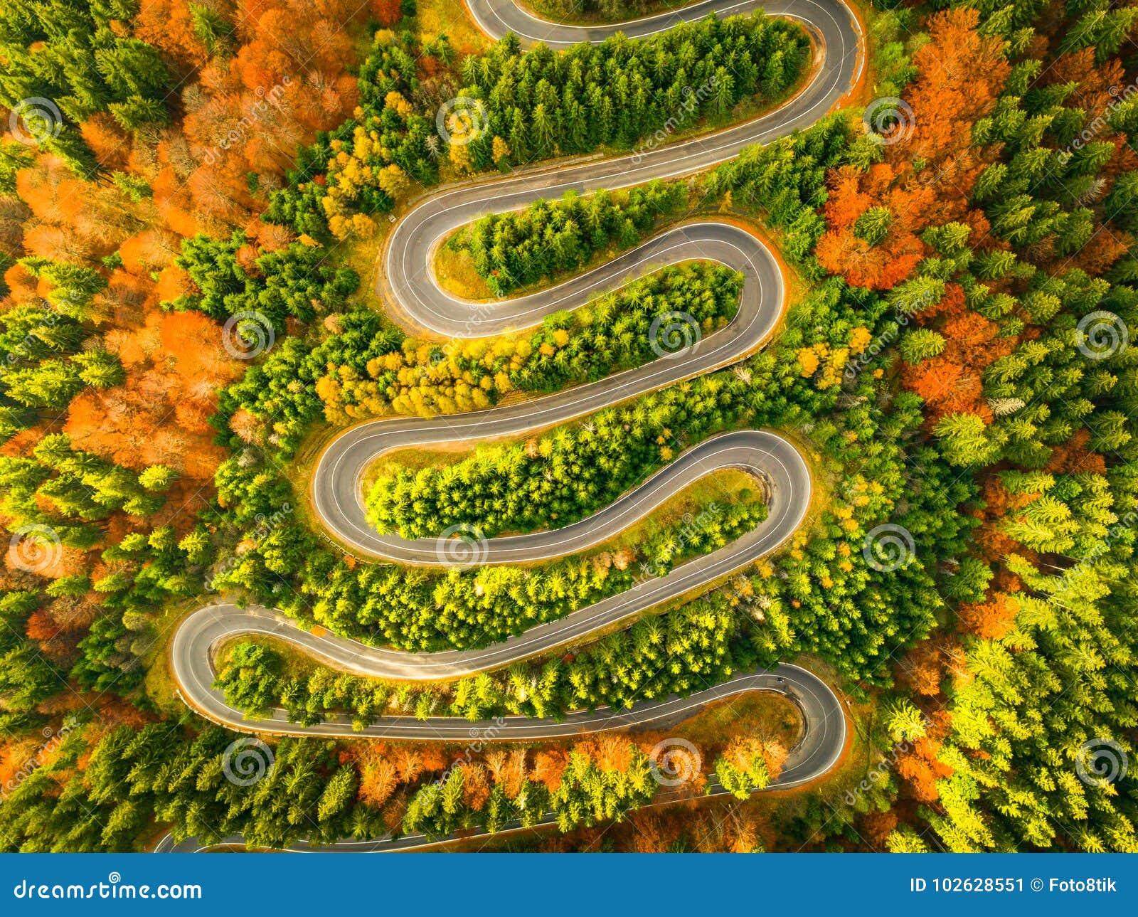 Vogelperspektive der kurvenreicher Straße durch Herbst farbigen Wald