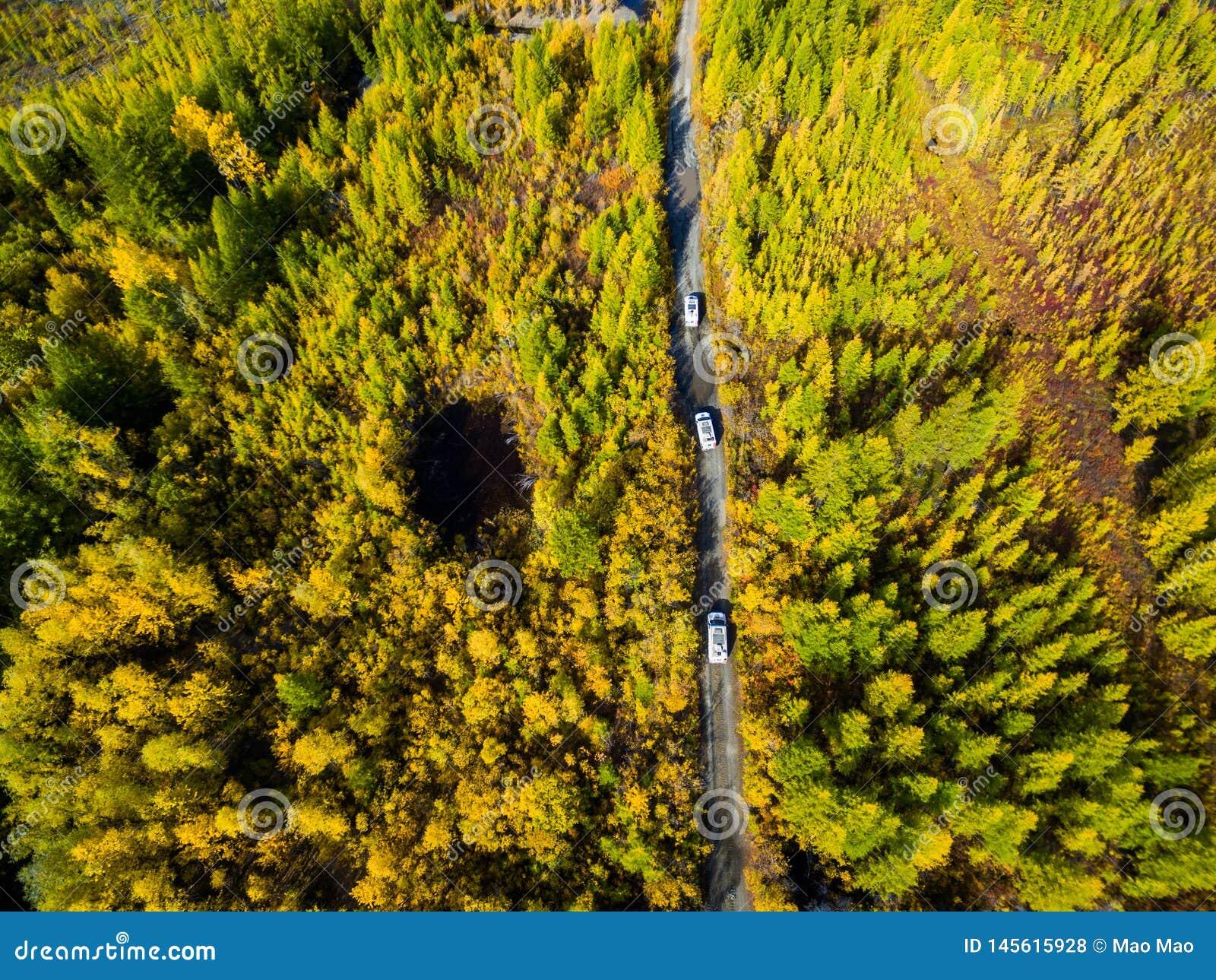 Vogelperspektive des Autofahrens durch den Wald auf Landstra?e Russland