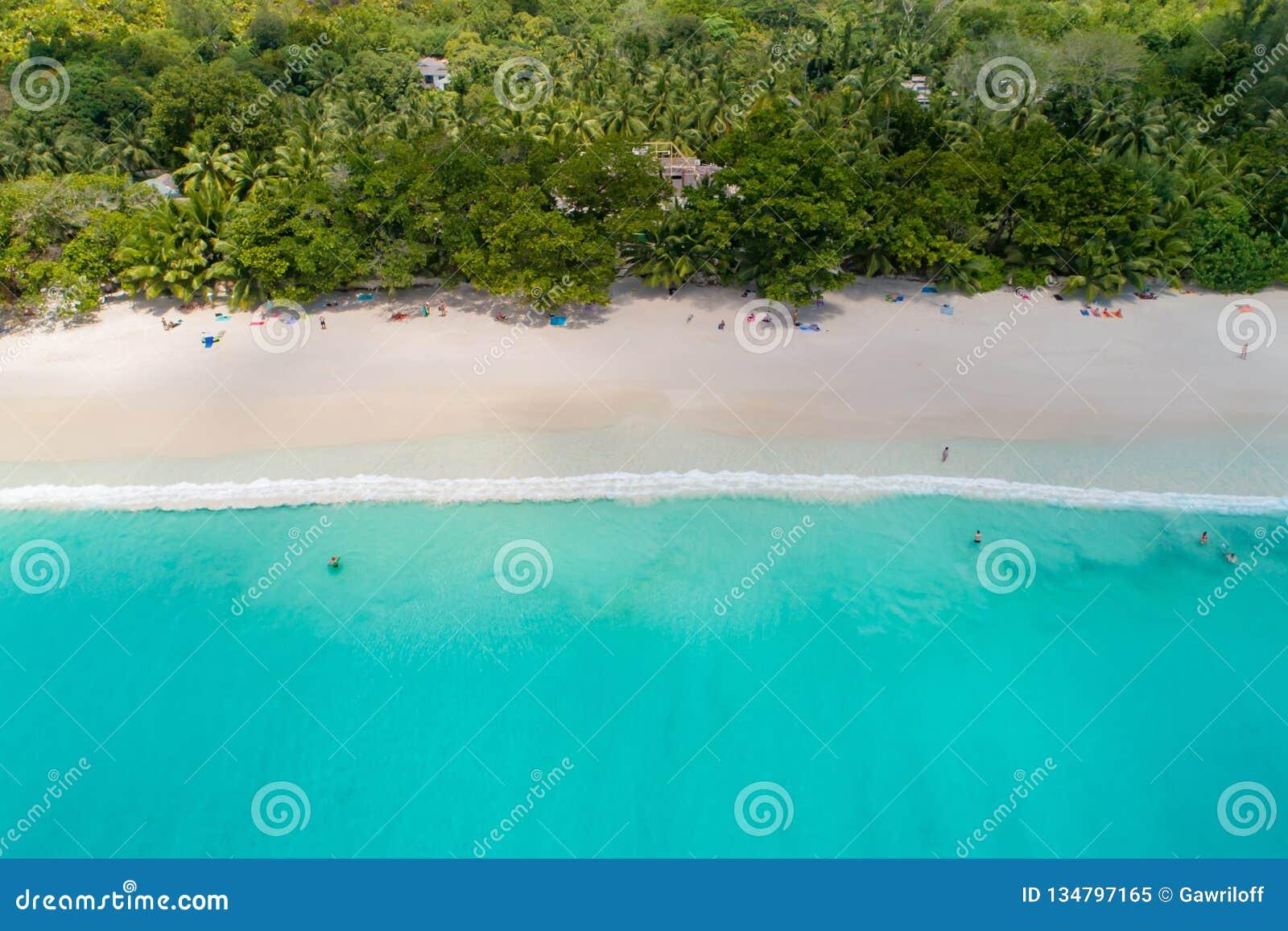 Vogelperspektive des sandigen Strandes mit den Touristen, die im schönen klaren Meerwasser schwimmen