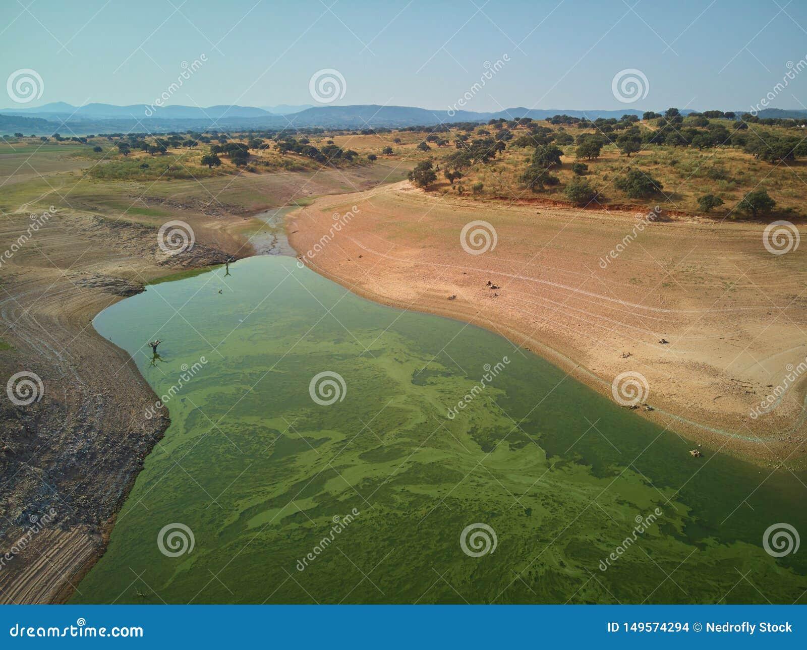 Vogelperspektive des Valdecañas-Reservoirs, mit grünem Wasser von den Algen und natürliche Linien des Abfalls des Wassers frech