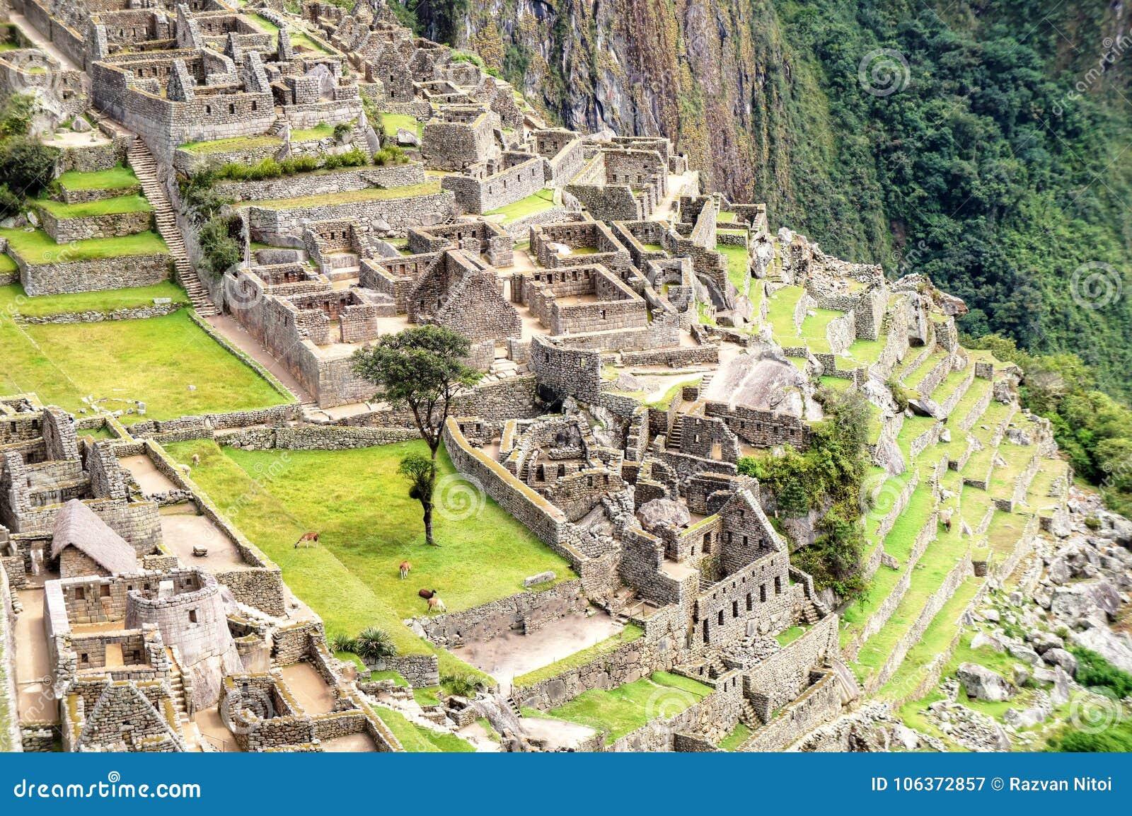 Vogelperspektive Machu Picchu zu den Ruinen
