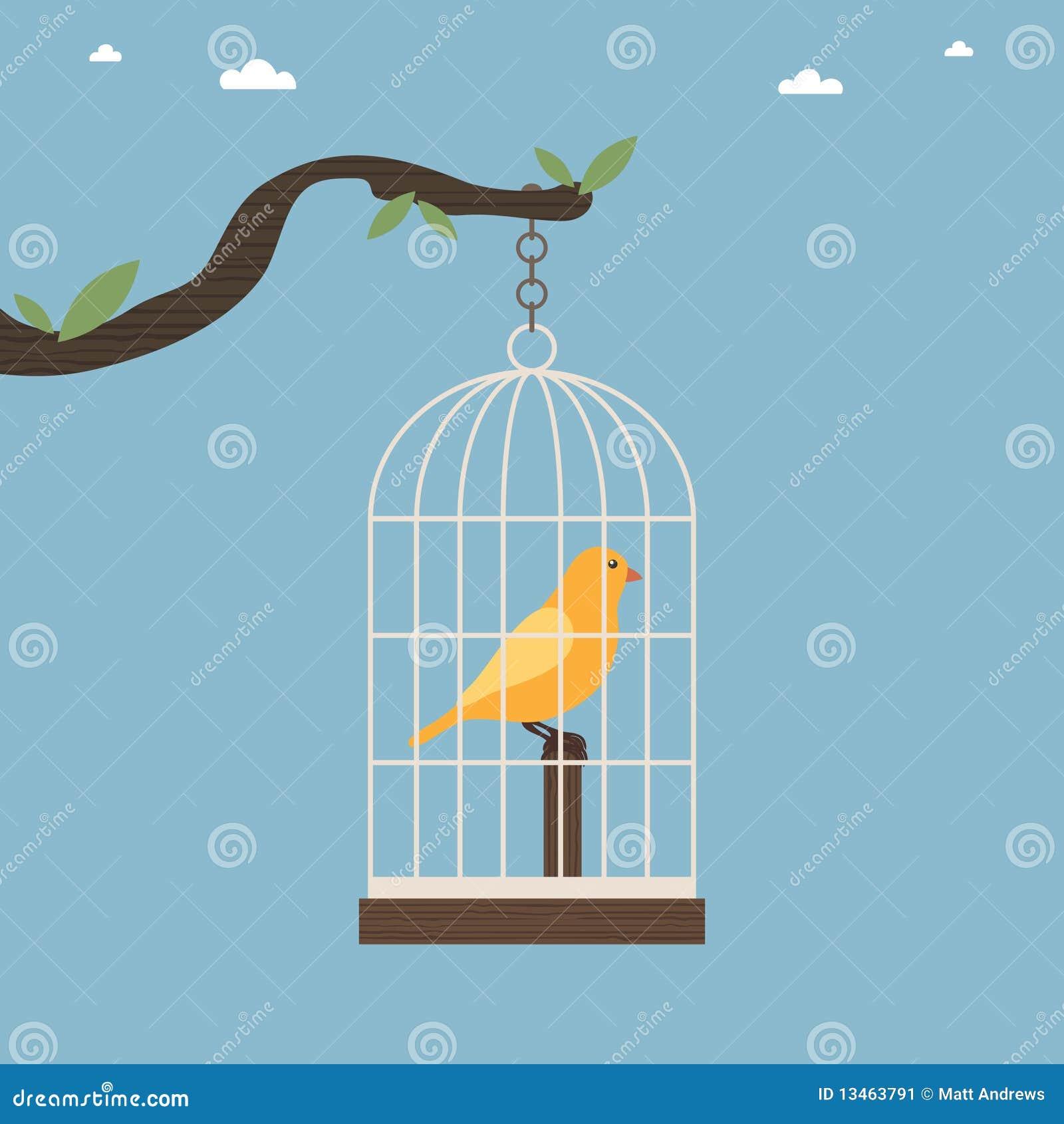 Vogelrahmen