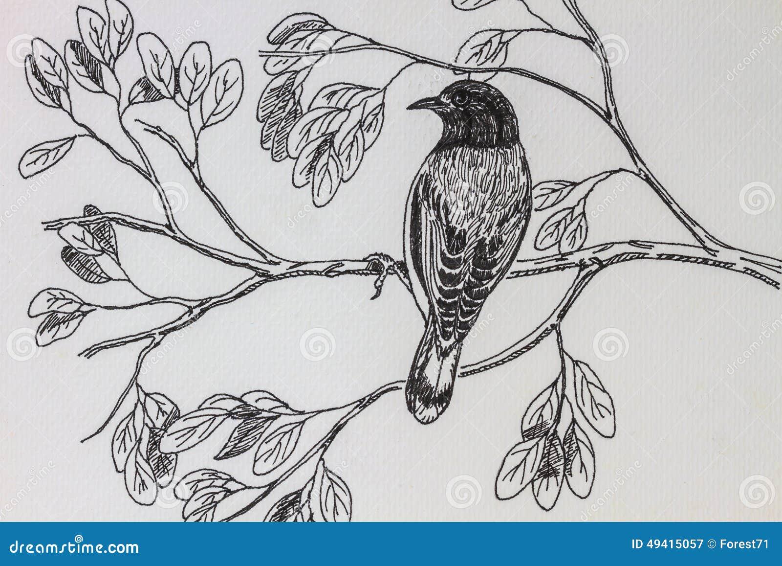 Download Vogelzeichnung stockbild. Bild von zeile, hintergrund - 49415057
