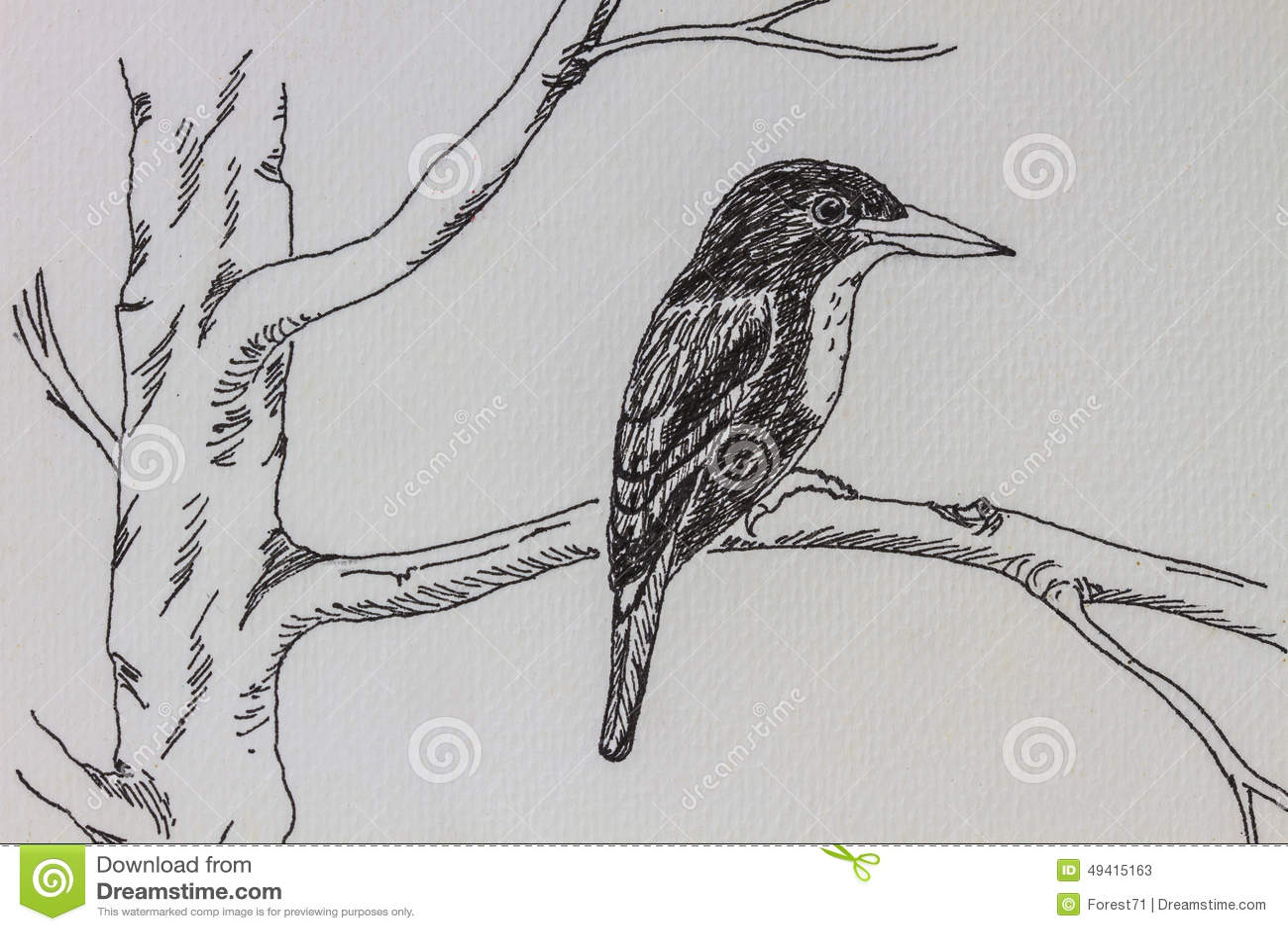 Download Vogelzeichnung stockbild. Bild von nett, vogel, schattenbild - 49415163