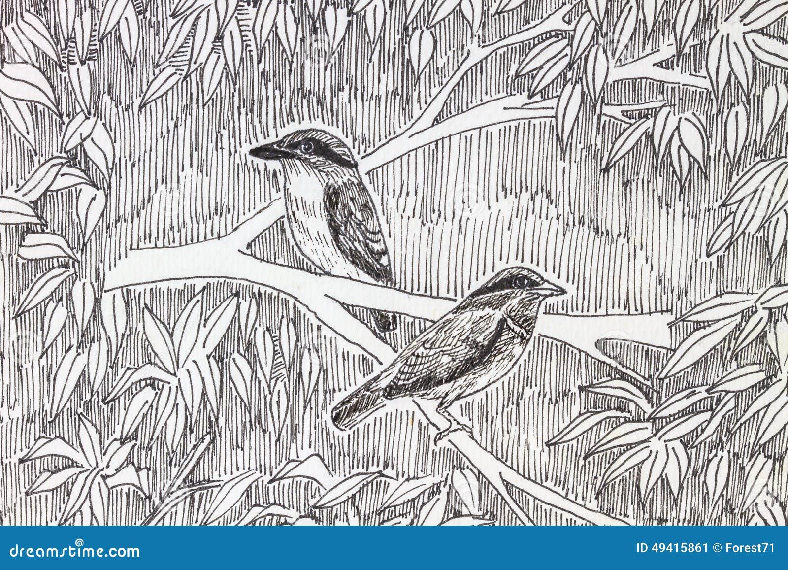 Download Vogelzeichnung stockbild. Bild von auslegung, nave, zeile - 49415861