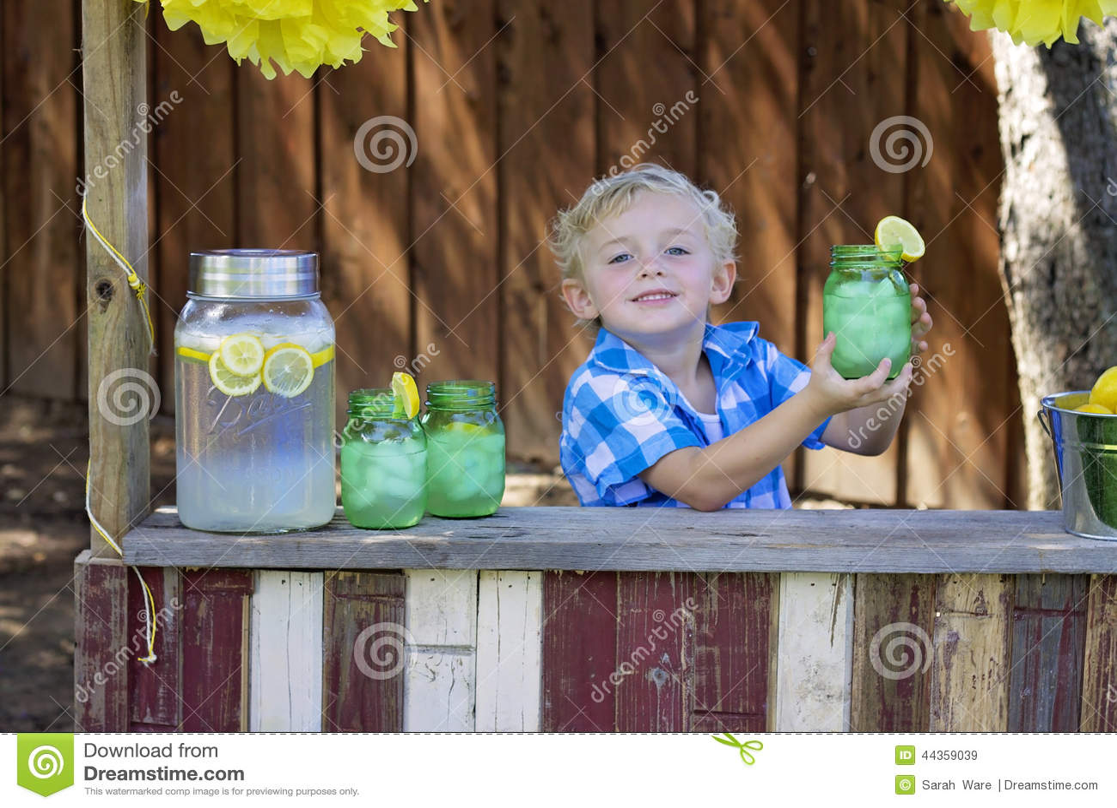 Voi gradiscono una certa limonata?