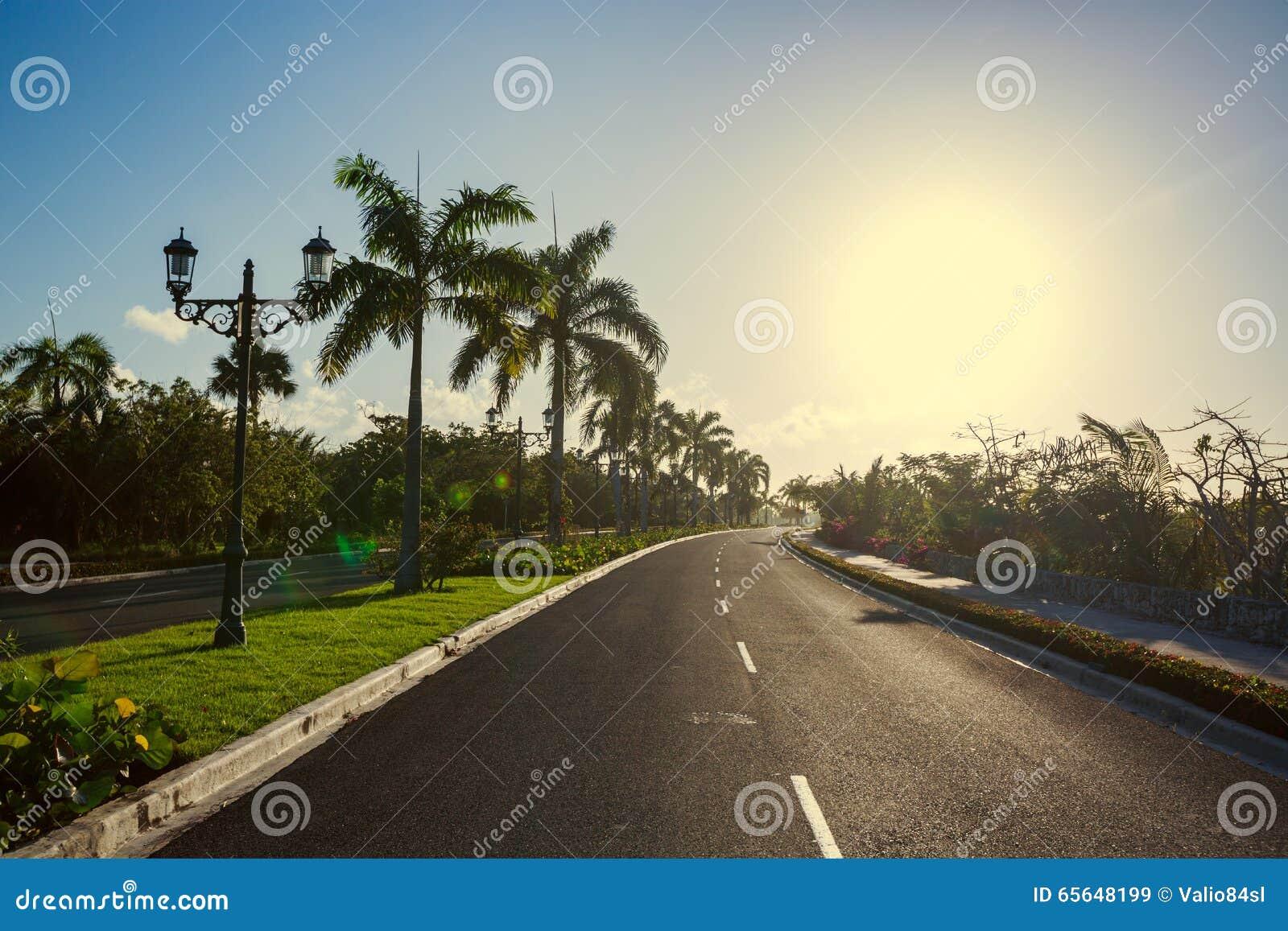 Voie avec la nature tropicale vers le lieu de villégiature luxueux dans Punta Cana,