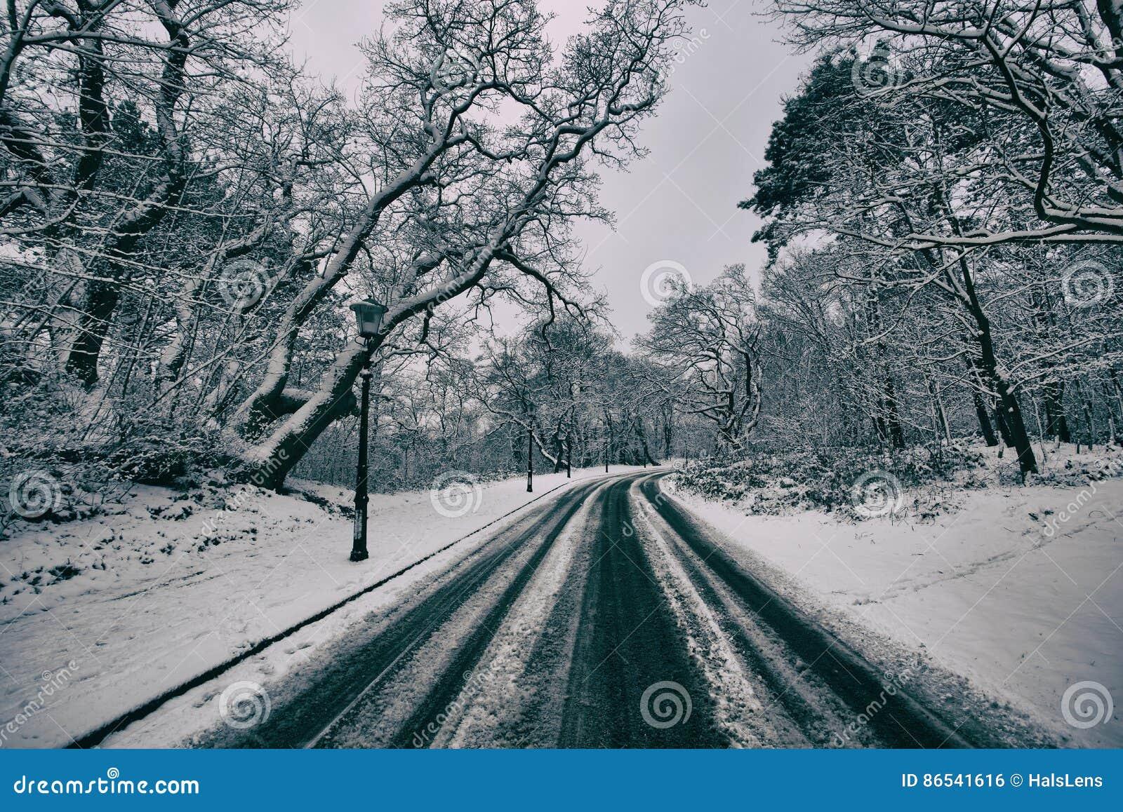 Voies neigeuses simples de pneu - portrait