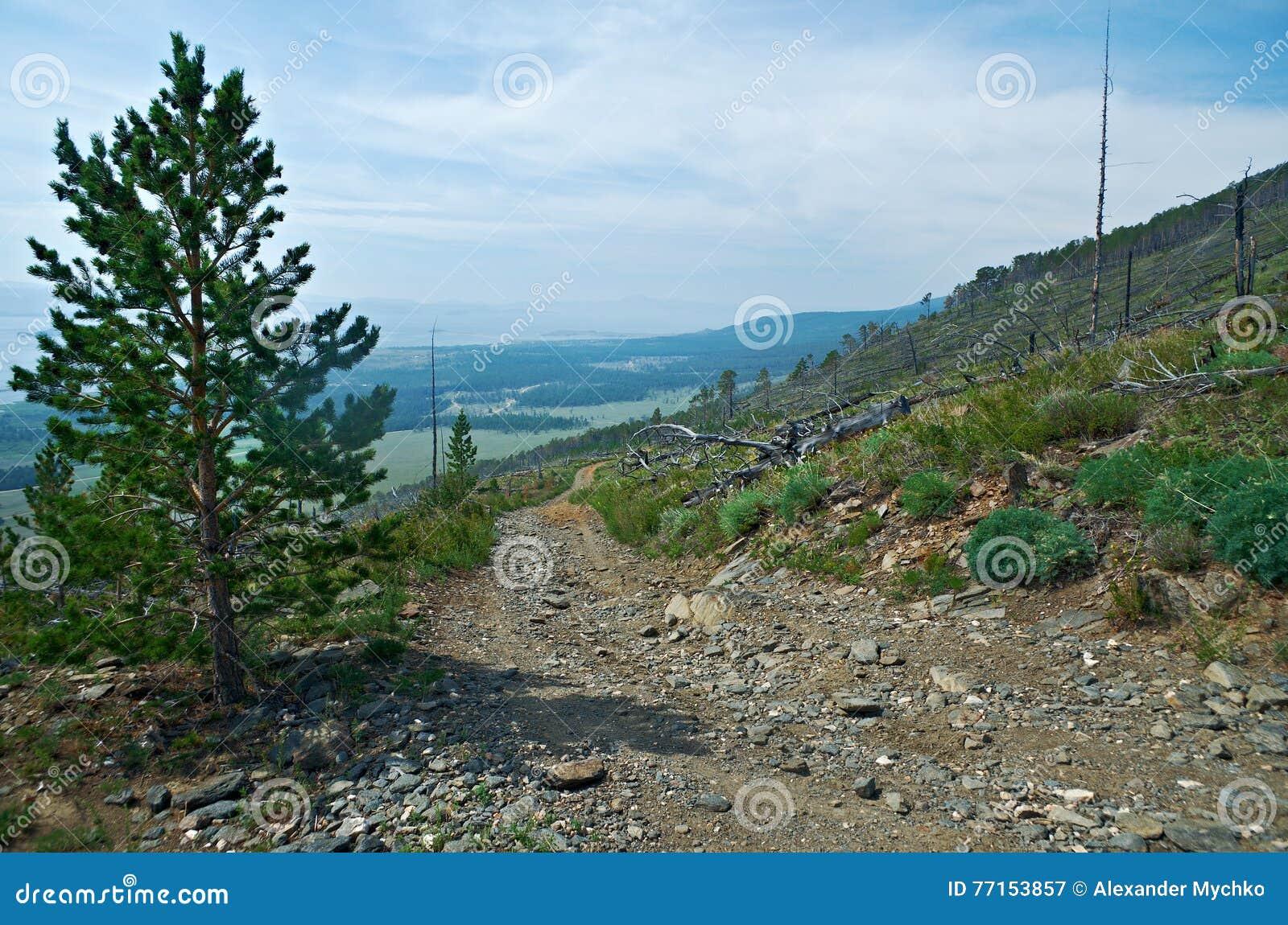 Voisinage de côte dans le kurma de canyon