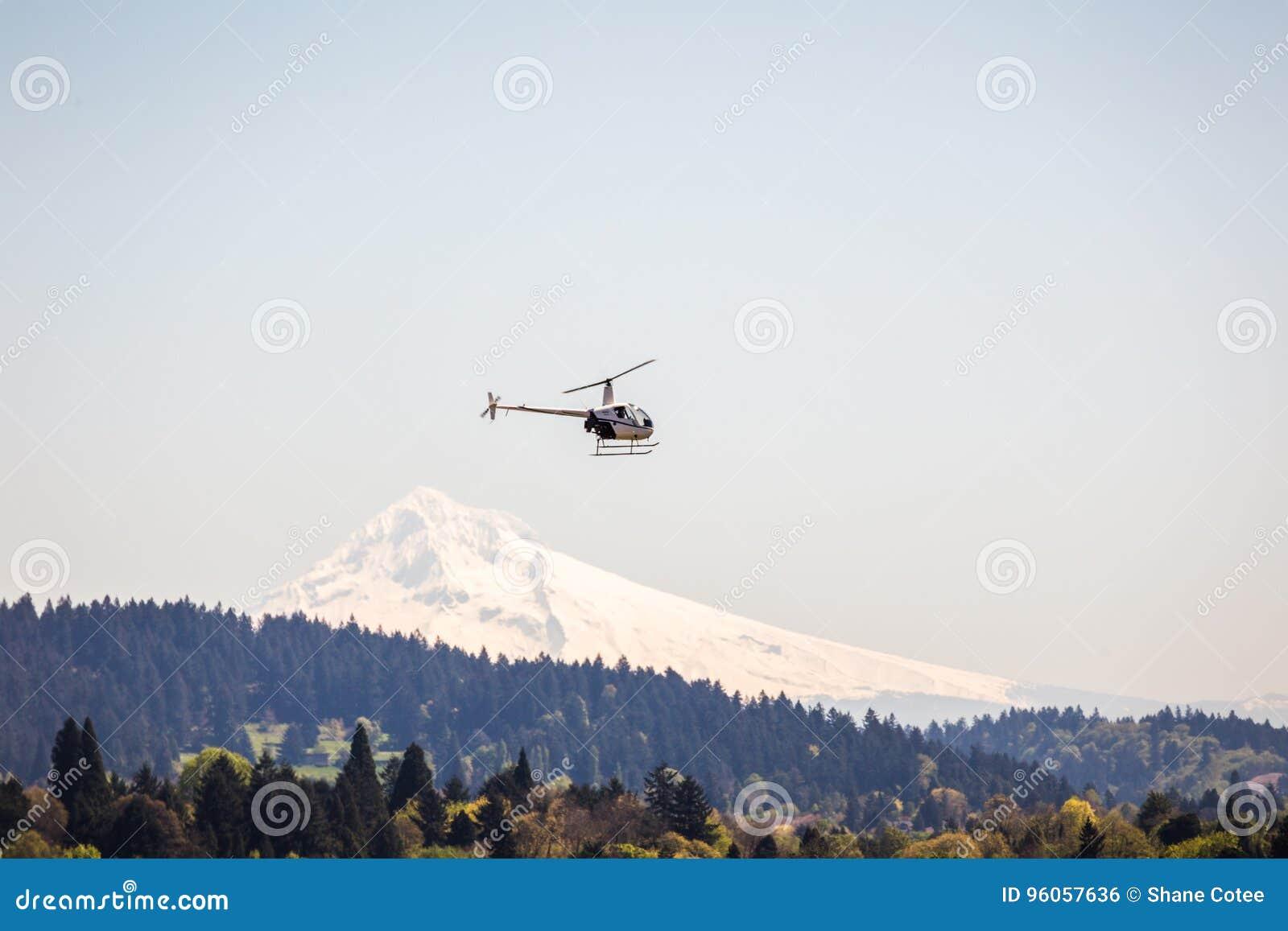 Vol d hélicoptère au-dessus de forêt et de montagnes