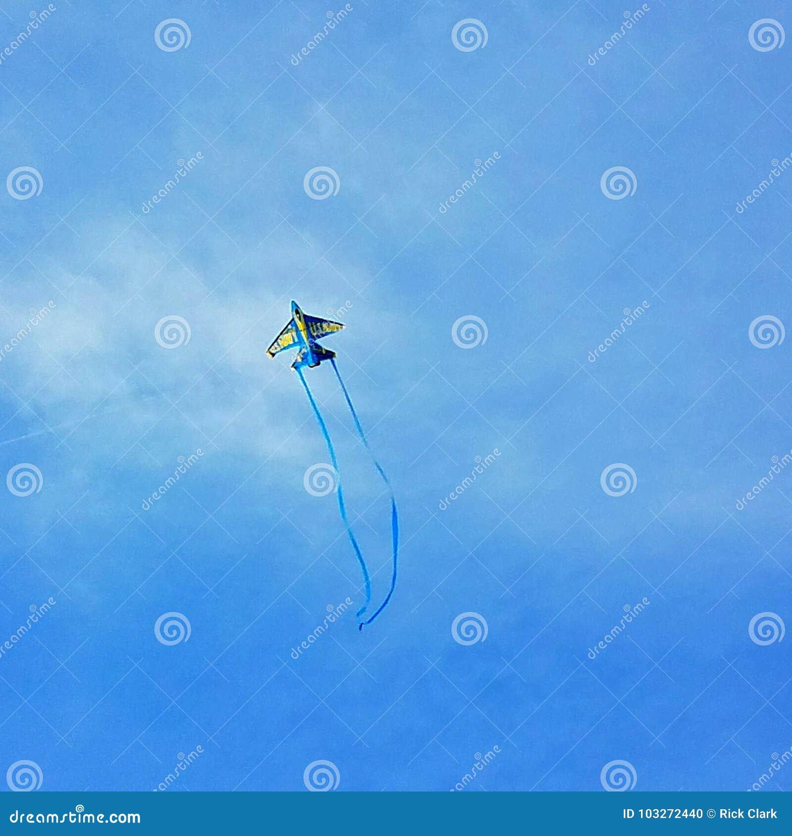 Vol de cerf-volant
