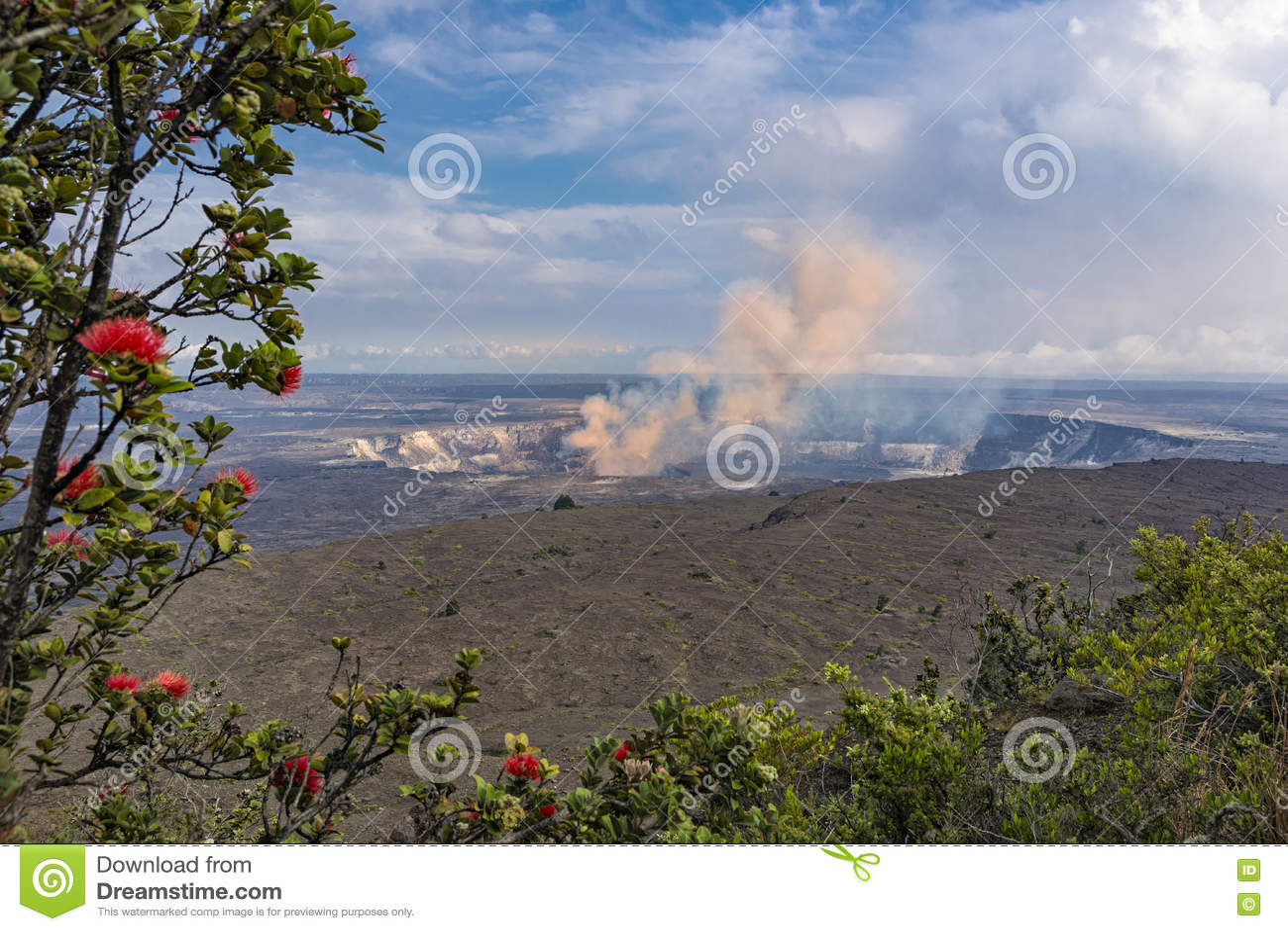 Volcan de caldeira de Kilauea sur la grande île Hawaï