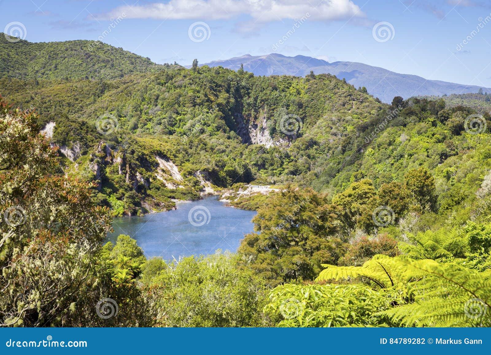 New Zealand Time Image: Volcanic Lake At Waimangu Stock Image