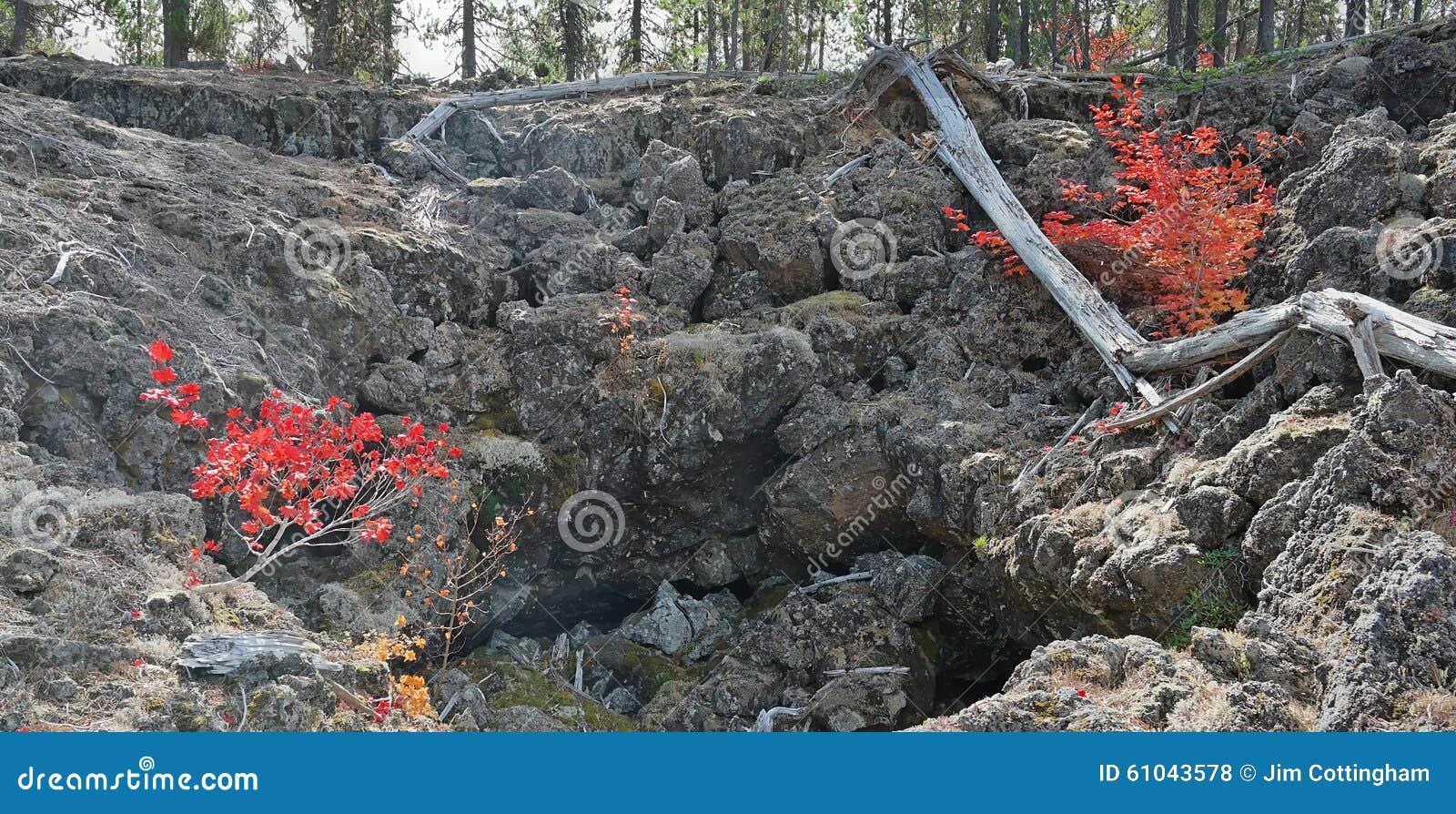 The lava flow of the Tolbachik Volcano, Mount Kamen and Klyuchevskaya Sopka