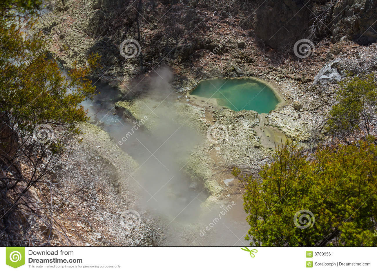 Volcanic Pools at Wai-O-Tapu or Sacred Waters – Thermal Wonderland Rotorua New Zealand