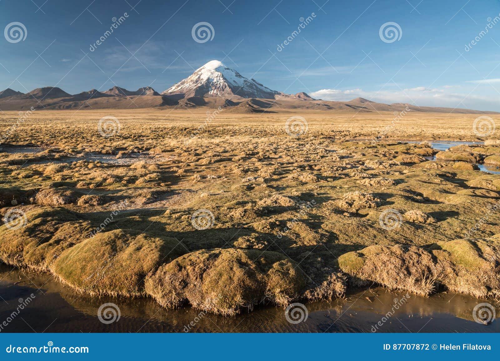 Volcano Nevado Sajama