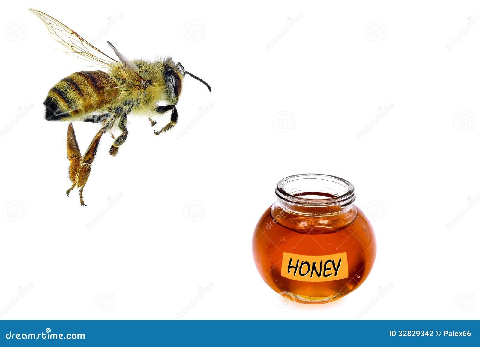 Voler au miel